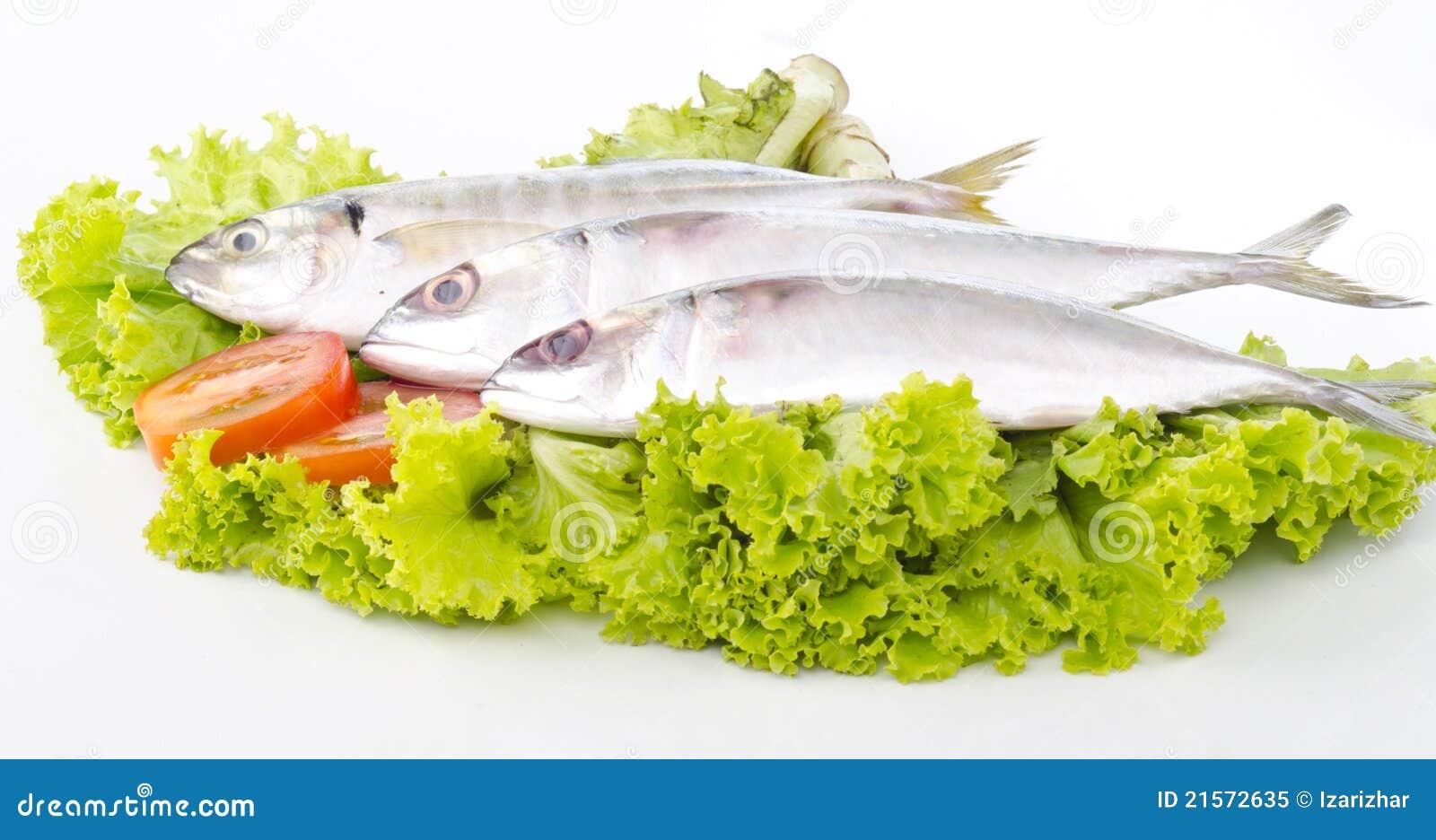 Pesci freschi isolati su bianco