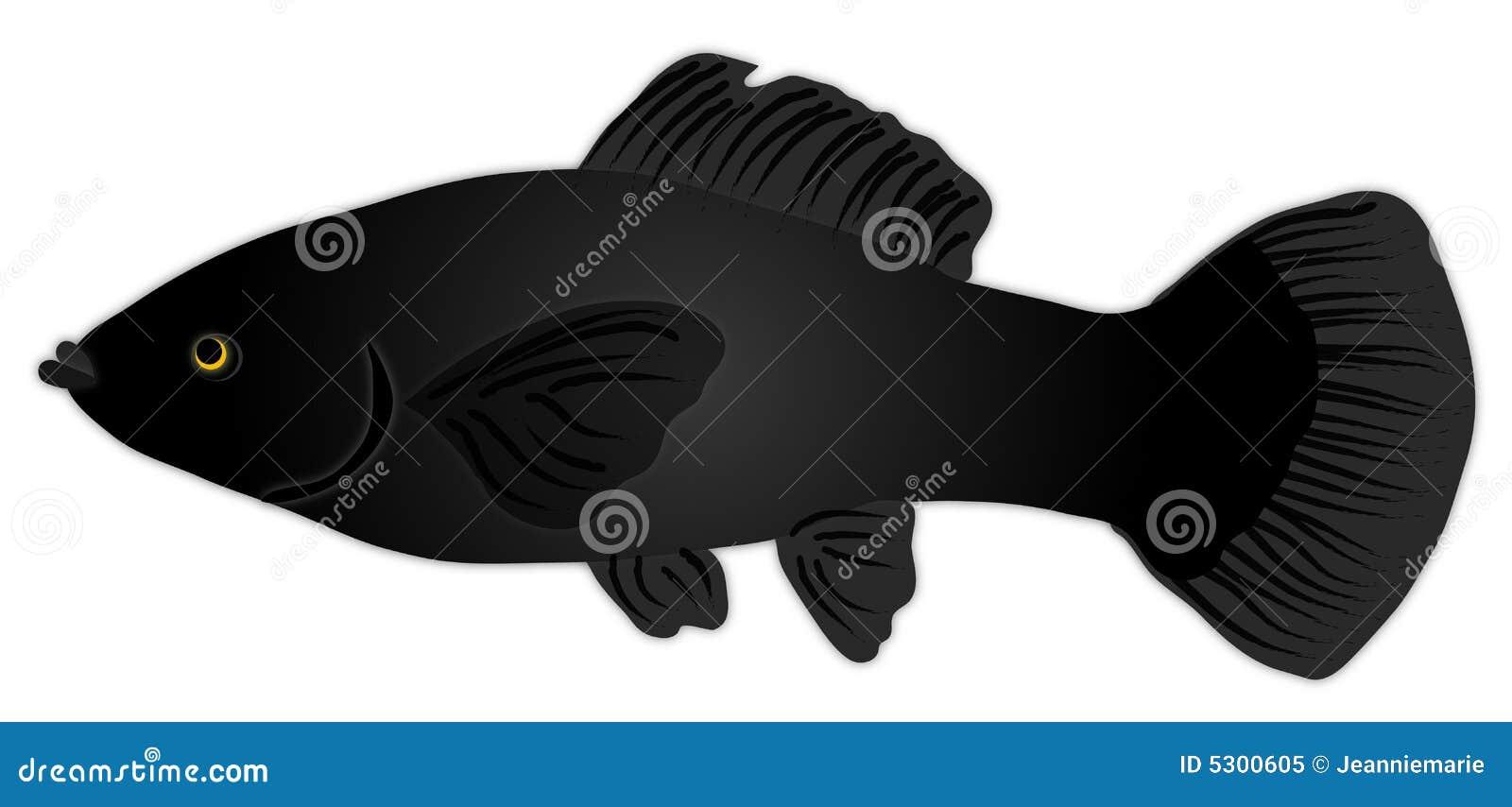 Download Pesci neri di Molly illustrazione di stock. Illustrazione di mollies - 5300605