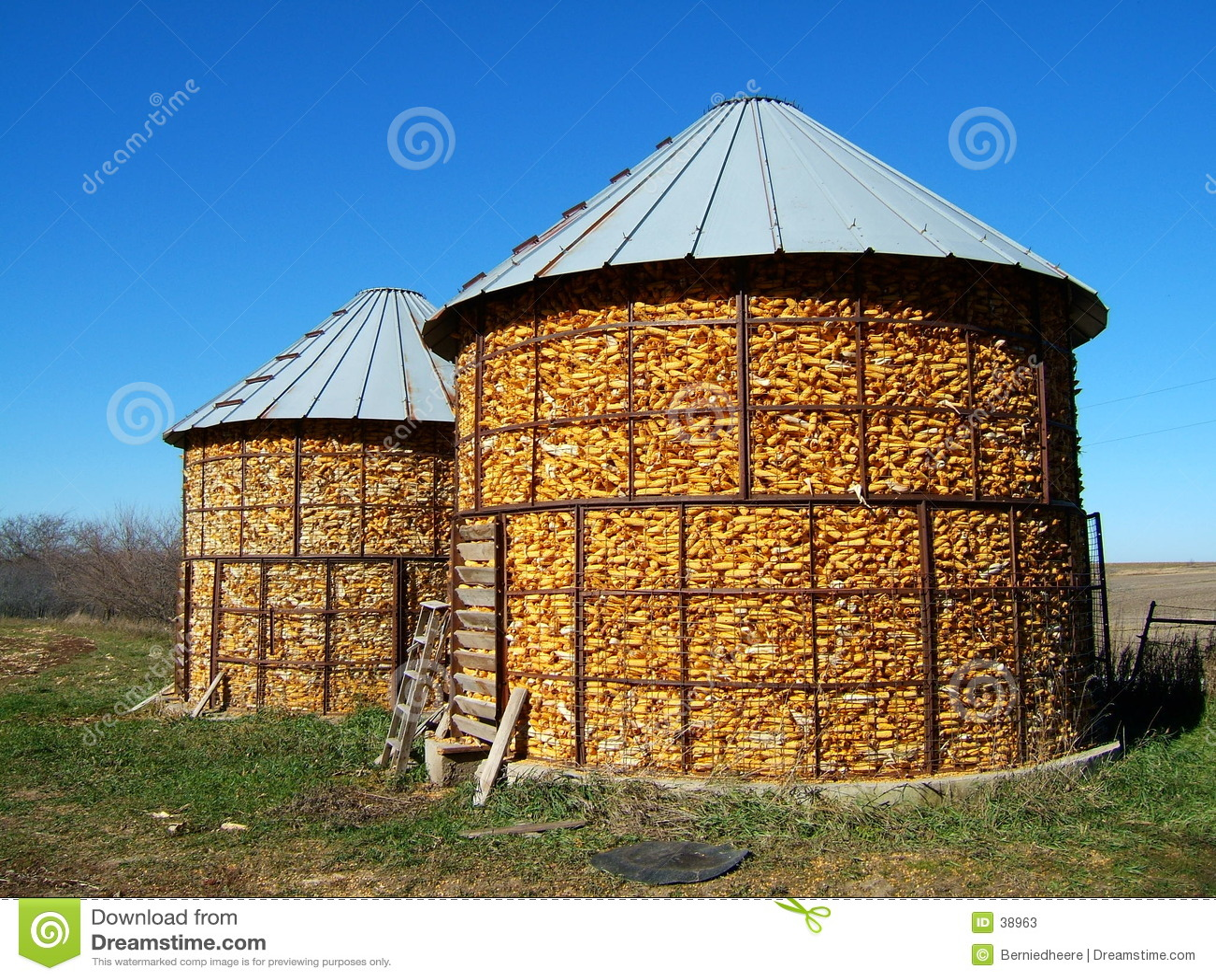 Download Pesebres del maíz imagen de archivo. Imagen de alimentación - 38963