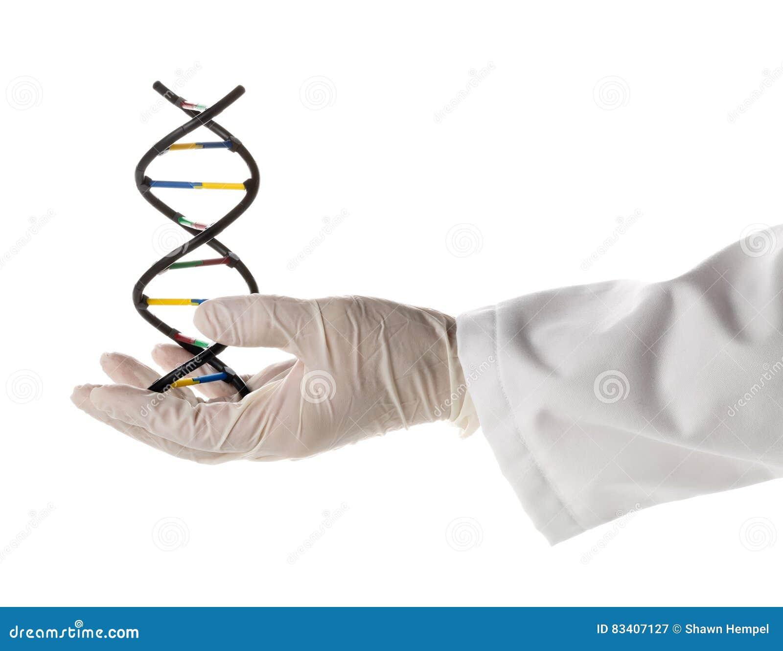 Pesquisador com a luva que guarda o modelo da molécula do ADN