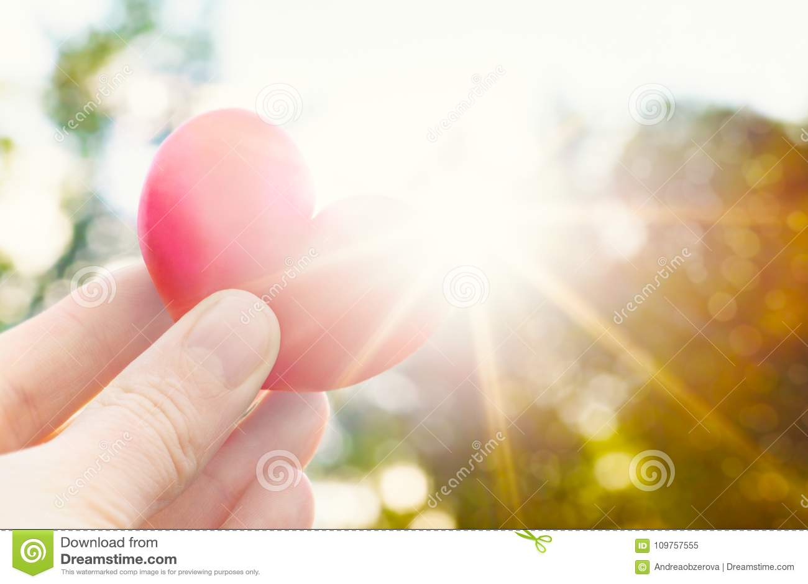 A pessoa que guarda o coração deu forma à ameixa contra o sol Imagem do estilo de vida do conceito do amor com alargamento do sol