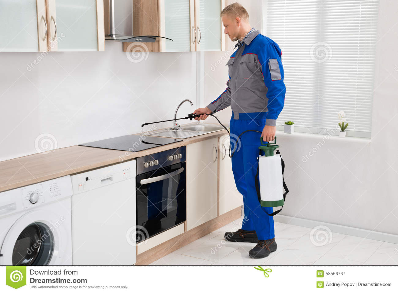 Pest Control Worker Spraying Pesticide On Induction Hob