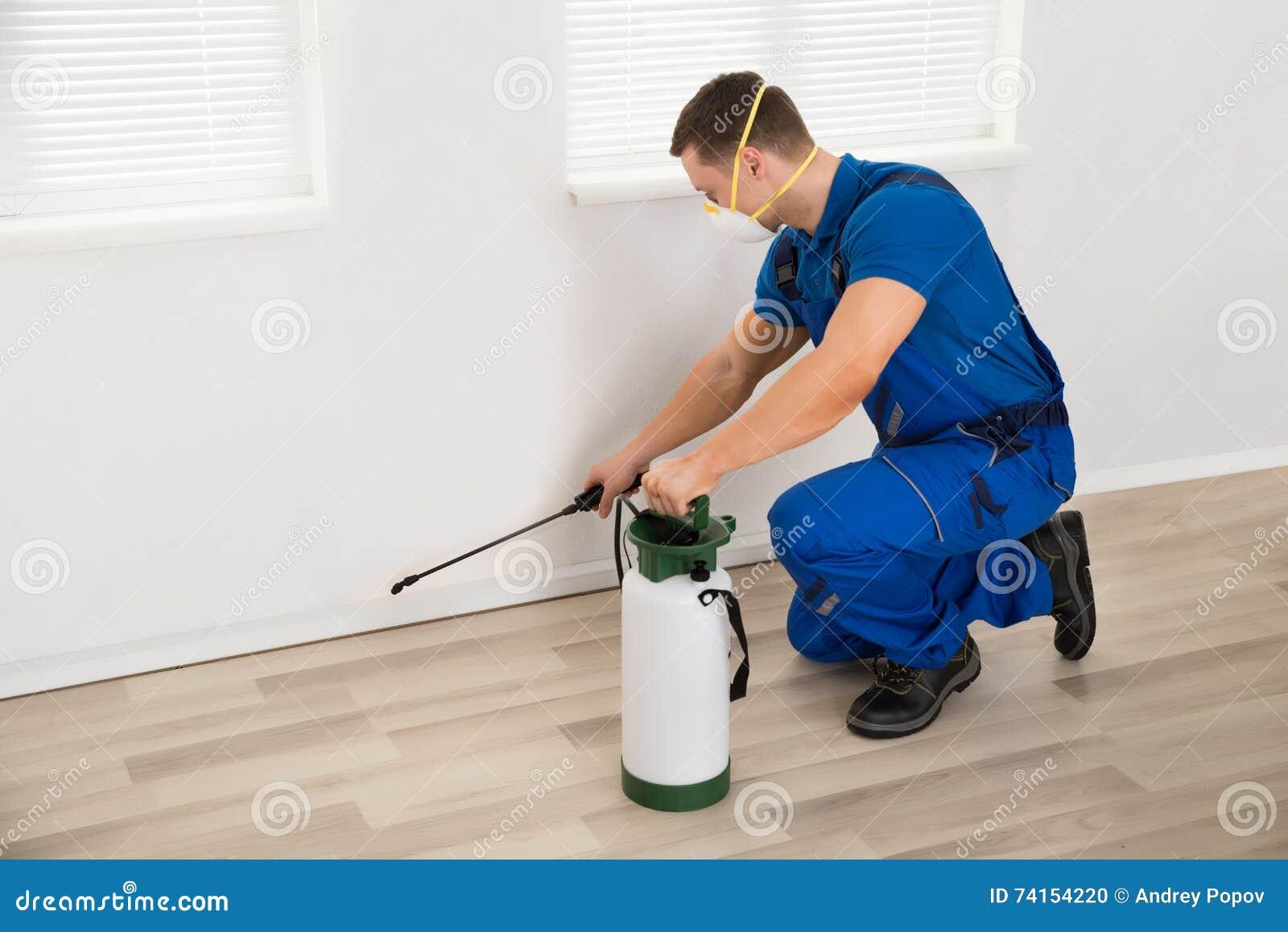 Pesticida de rociadura del trabajador en la pared en casa
