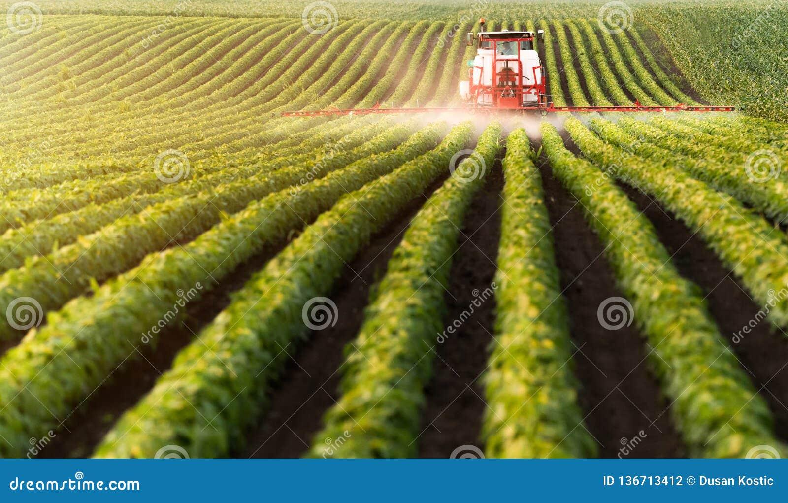 Pesticides de pulvérisation de tracteur au champ de haricot de soja
