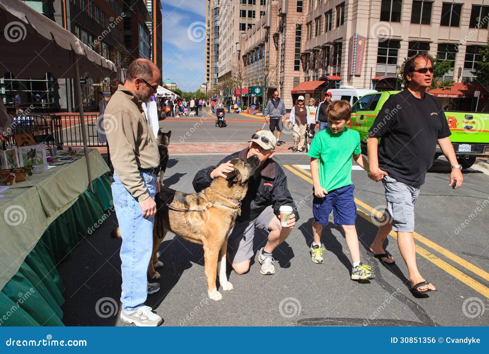 Pet Adoption Event editorial photo  Image of animal, outdoor