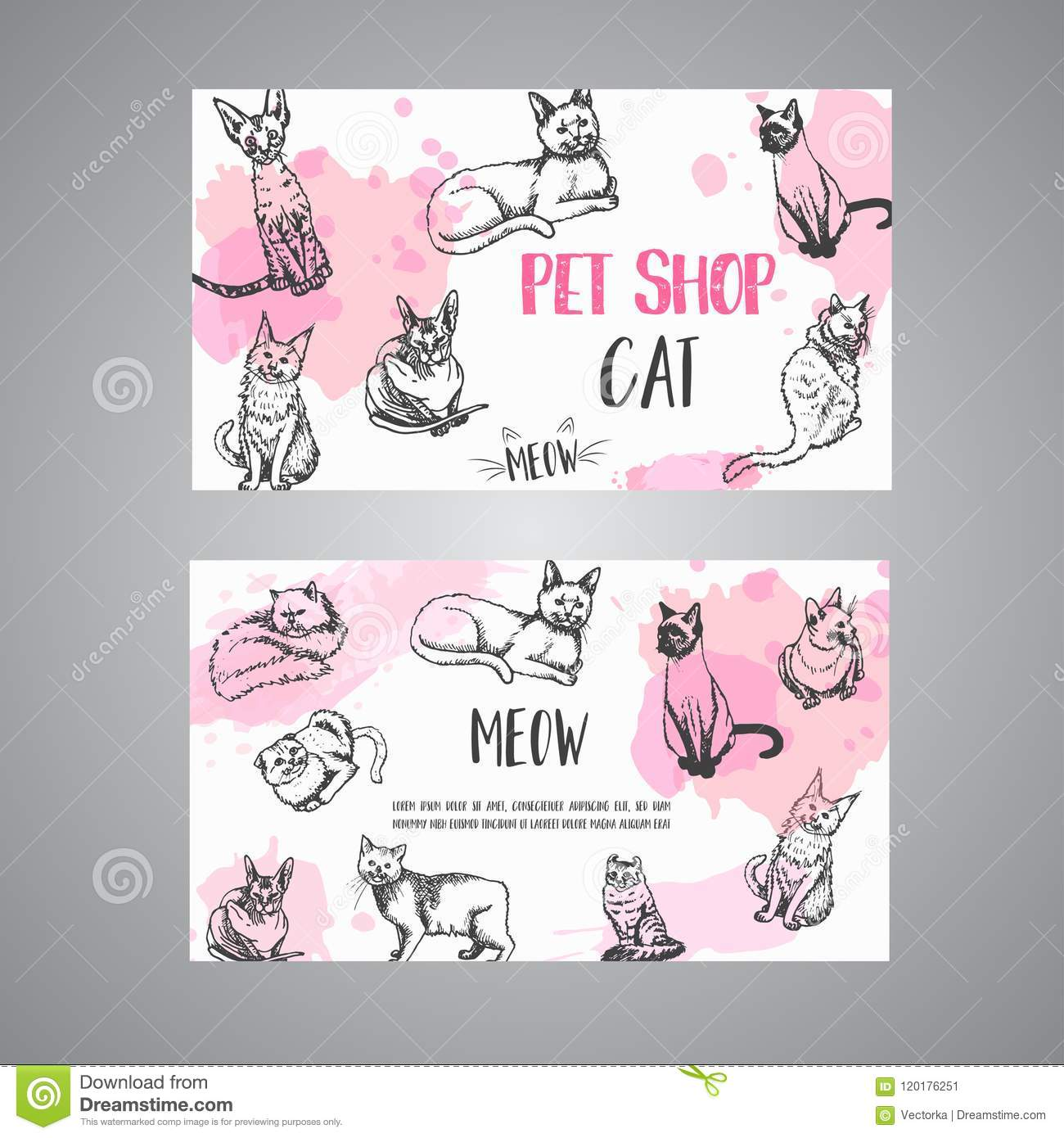 Pet Shop Business Card With Cats Cat Meow Text Vector Illustration