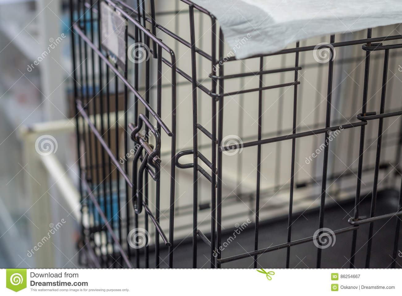 Pet Wire Crate Or Animal Cage Stock Image - Image of kennels, open ...