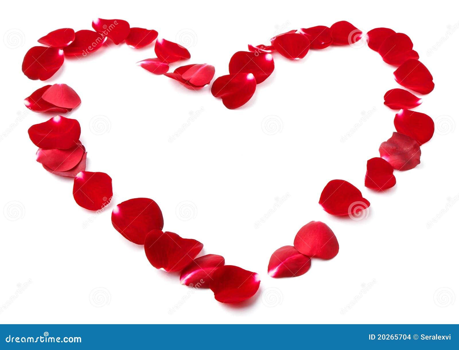 Petals of wild roses in shape of heart stock images image 20265704 - Fleur en forme de coeur ...