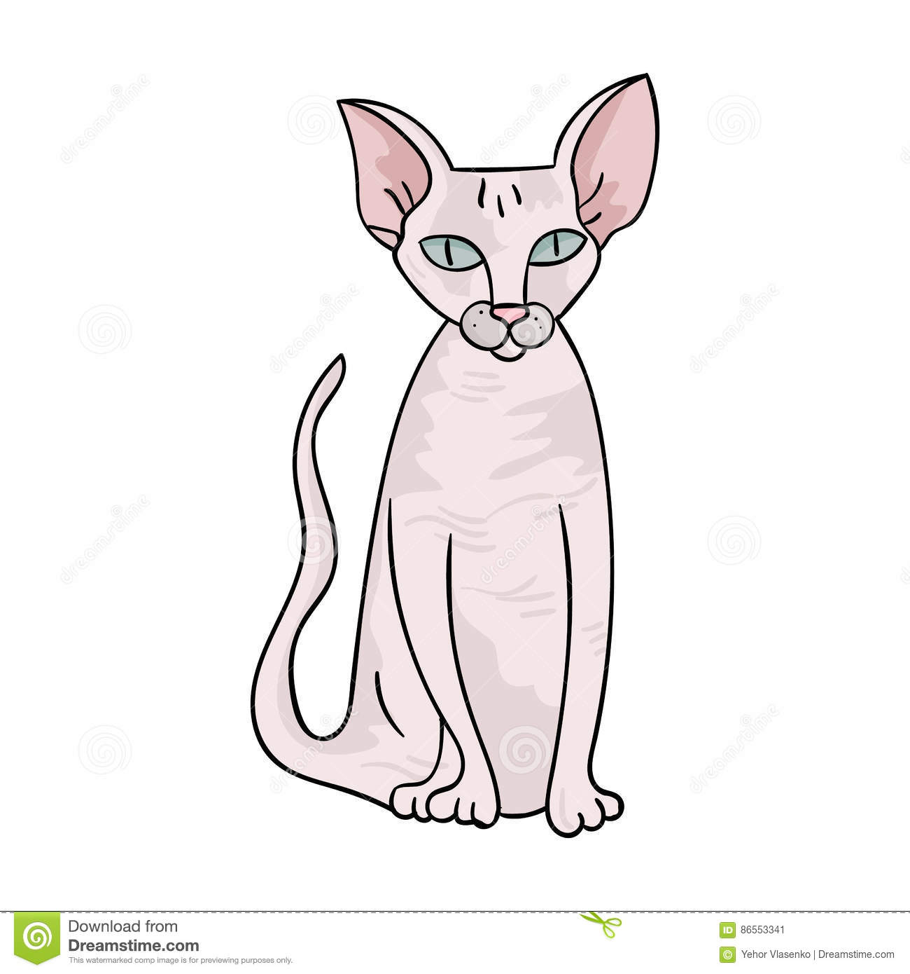Peterbald Icon In Cartoon Style On White Background Cat Breeds