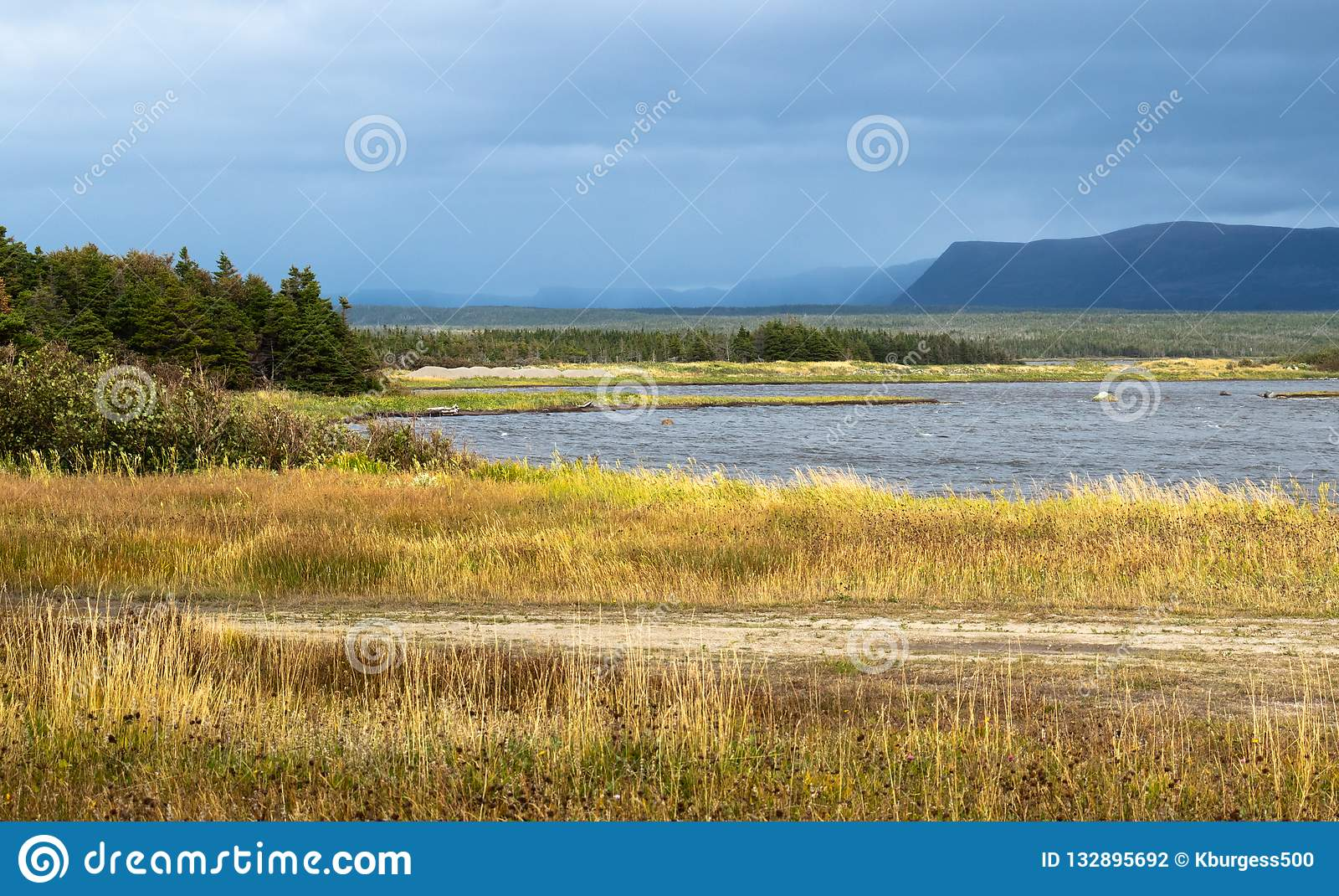 Petit étang près du ruisseau occidental Terre-Neuve Canada un jour orageux foncé d automne