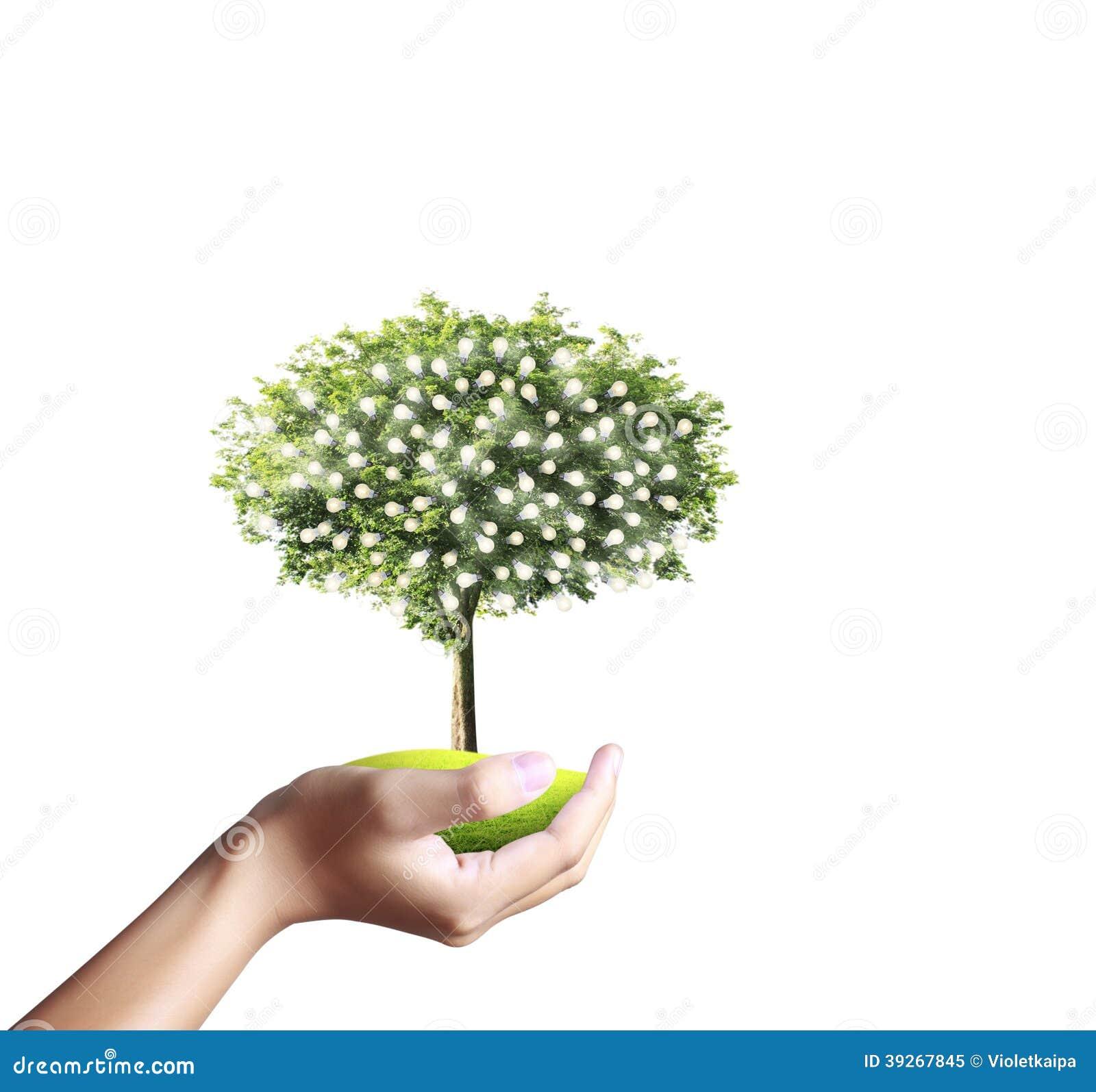 Petit arbre, usine à disposition