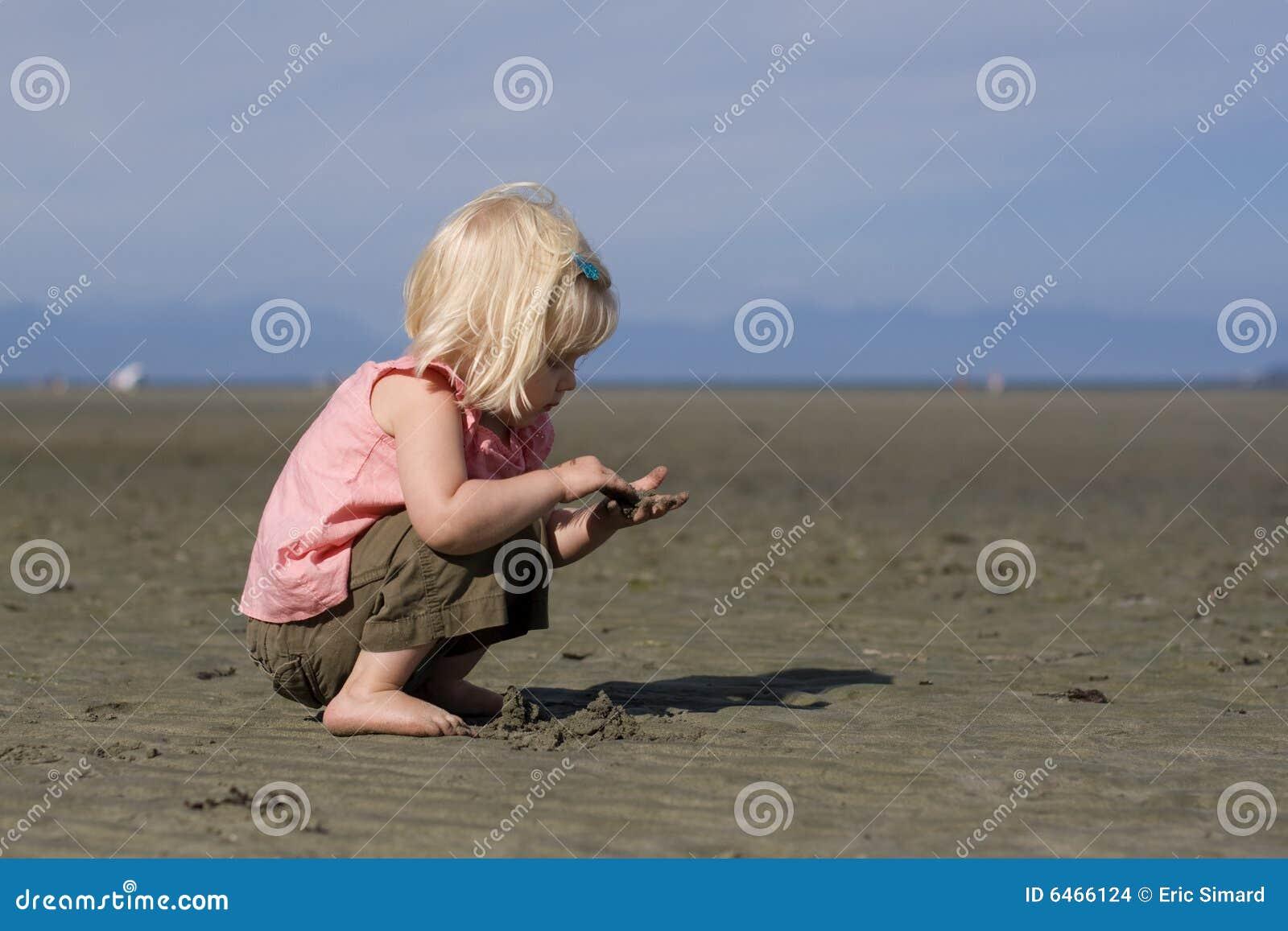 Petit Beachcomber