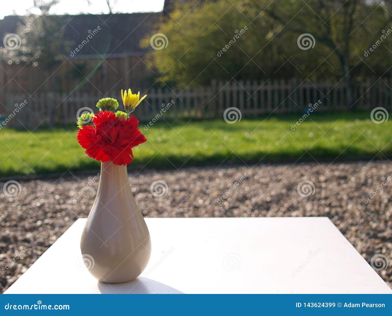 Petit Petit Bouquet Des Fleurs Avec L\'oeillet Rouge Image ...