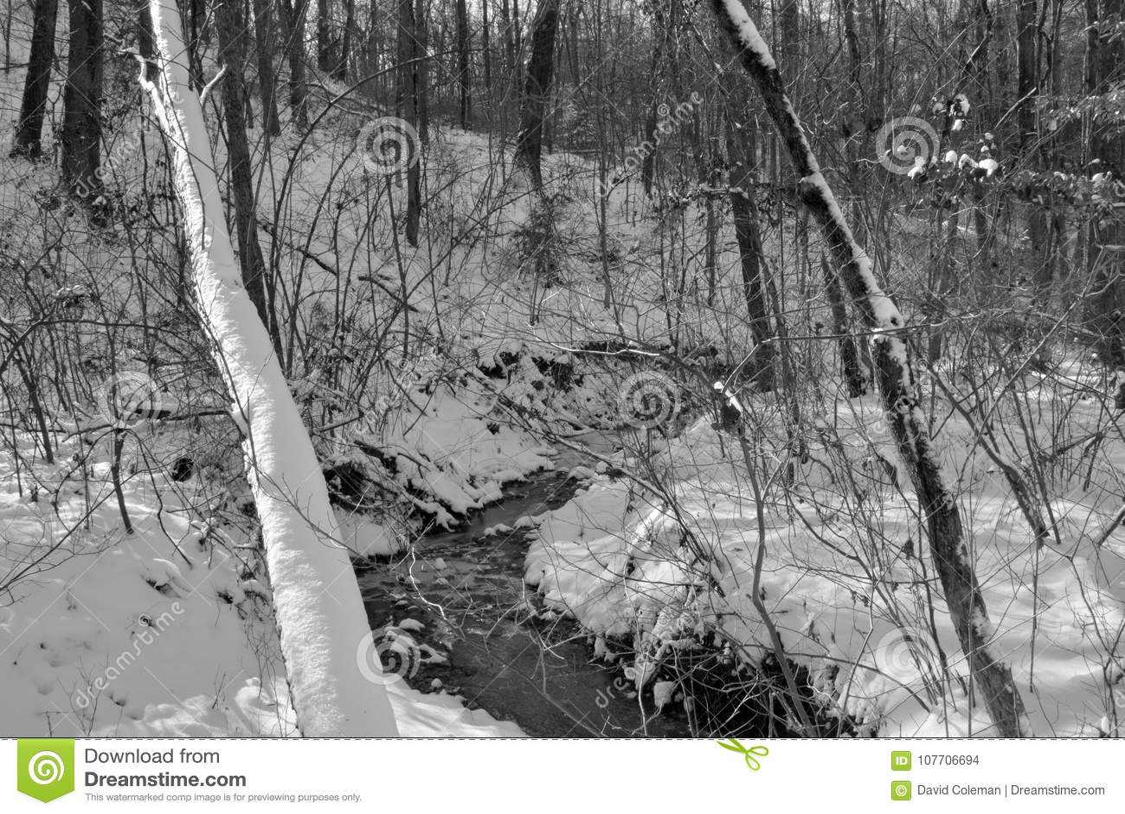 Petit courant dans la neige d hiver