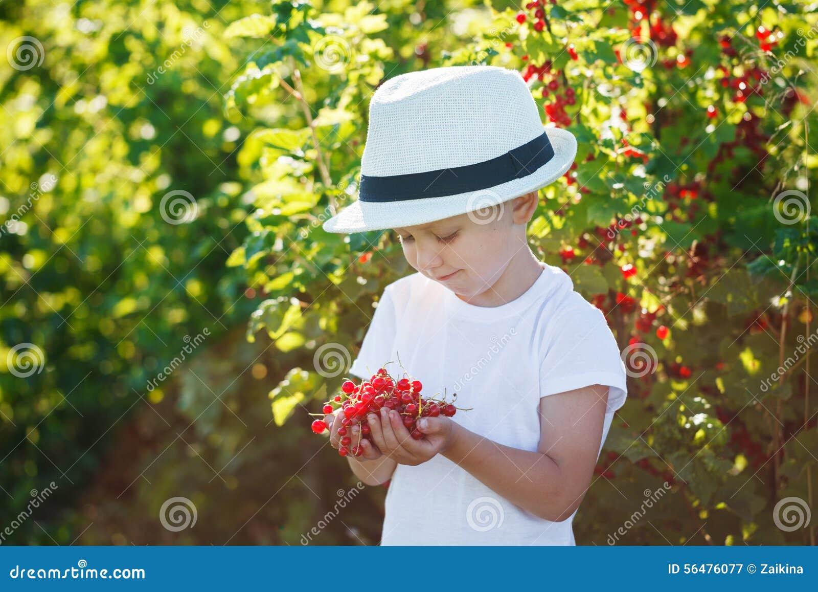 Petit garçon heureux tenant une groseille rouge dans un jardin