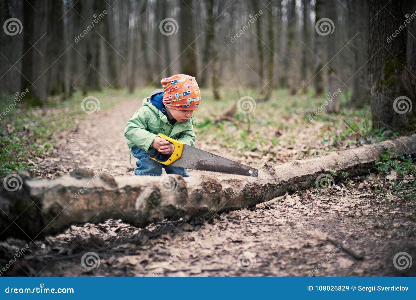 Petit garçon sciant un arbre tombé dans la forêt