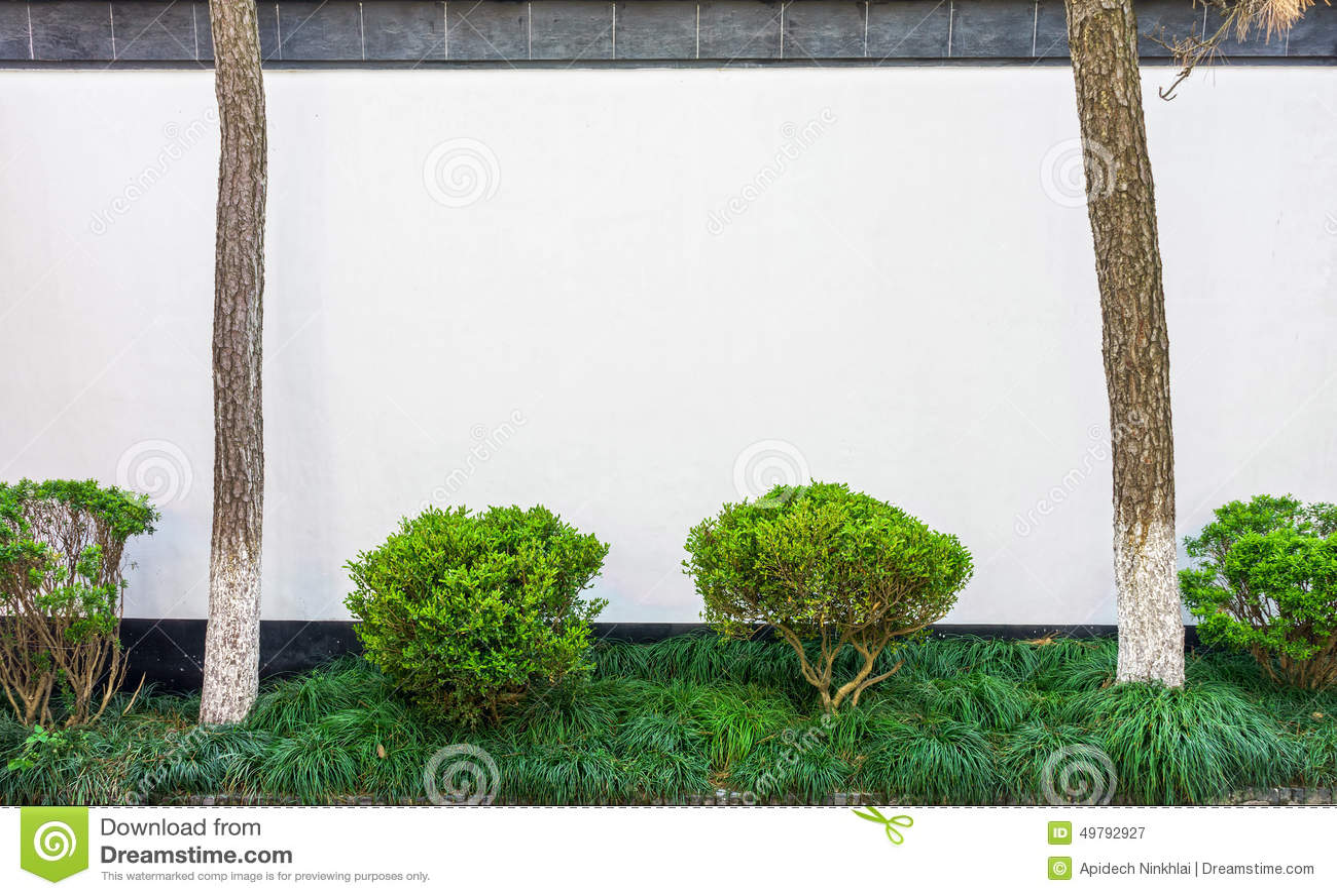 Petit jardin avec le mur en b ton blanc photo stock for Mur de galets jardin