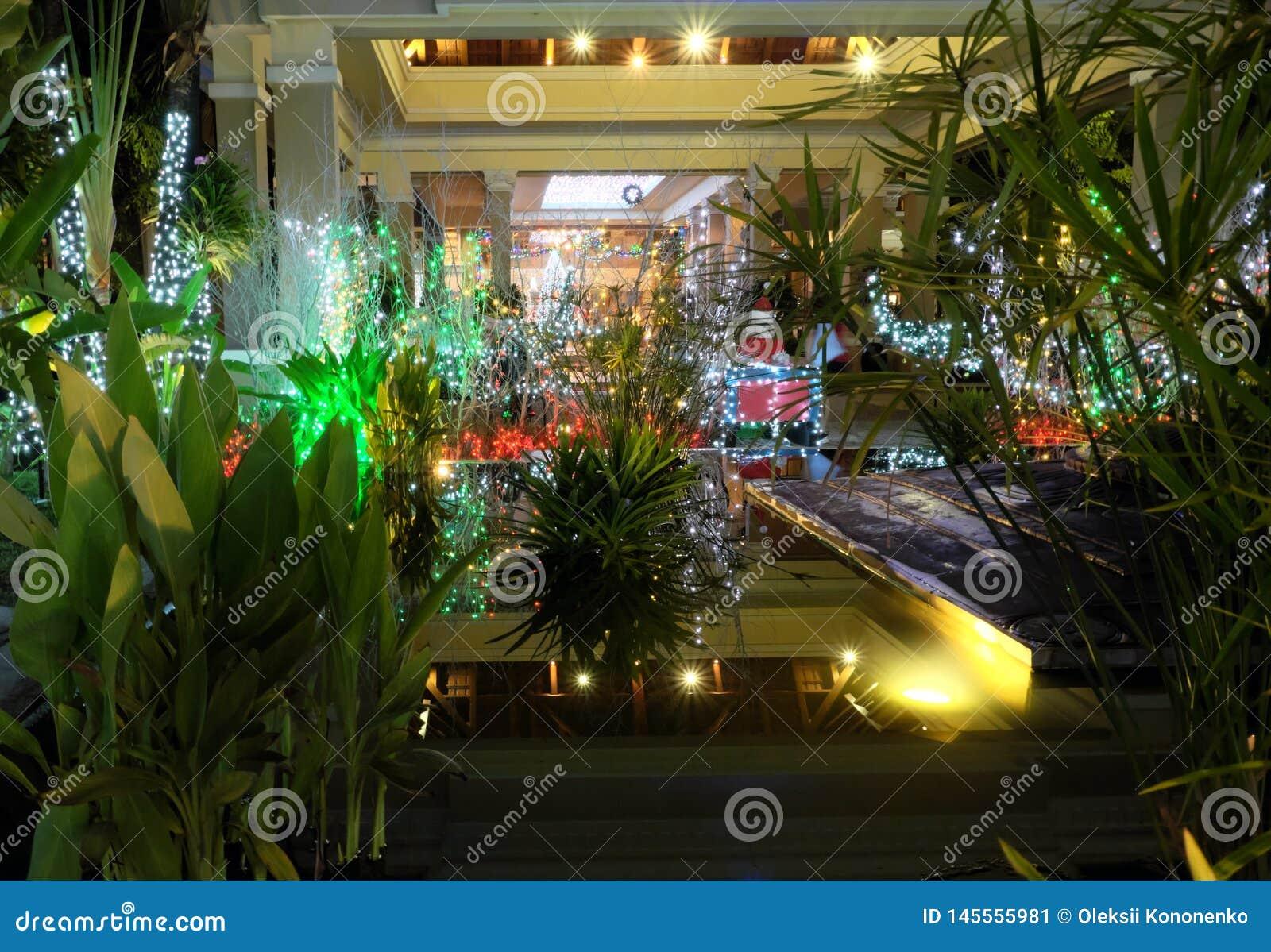 Petit Jardin Tropical, Décoré Des Décorations De Noël ...