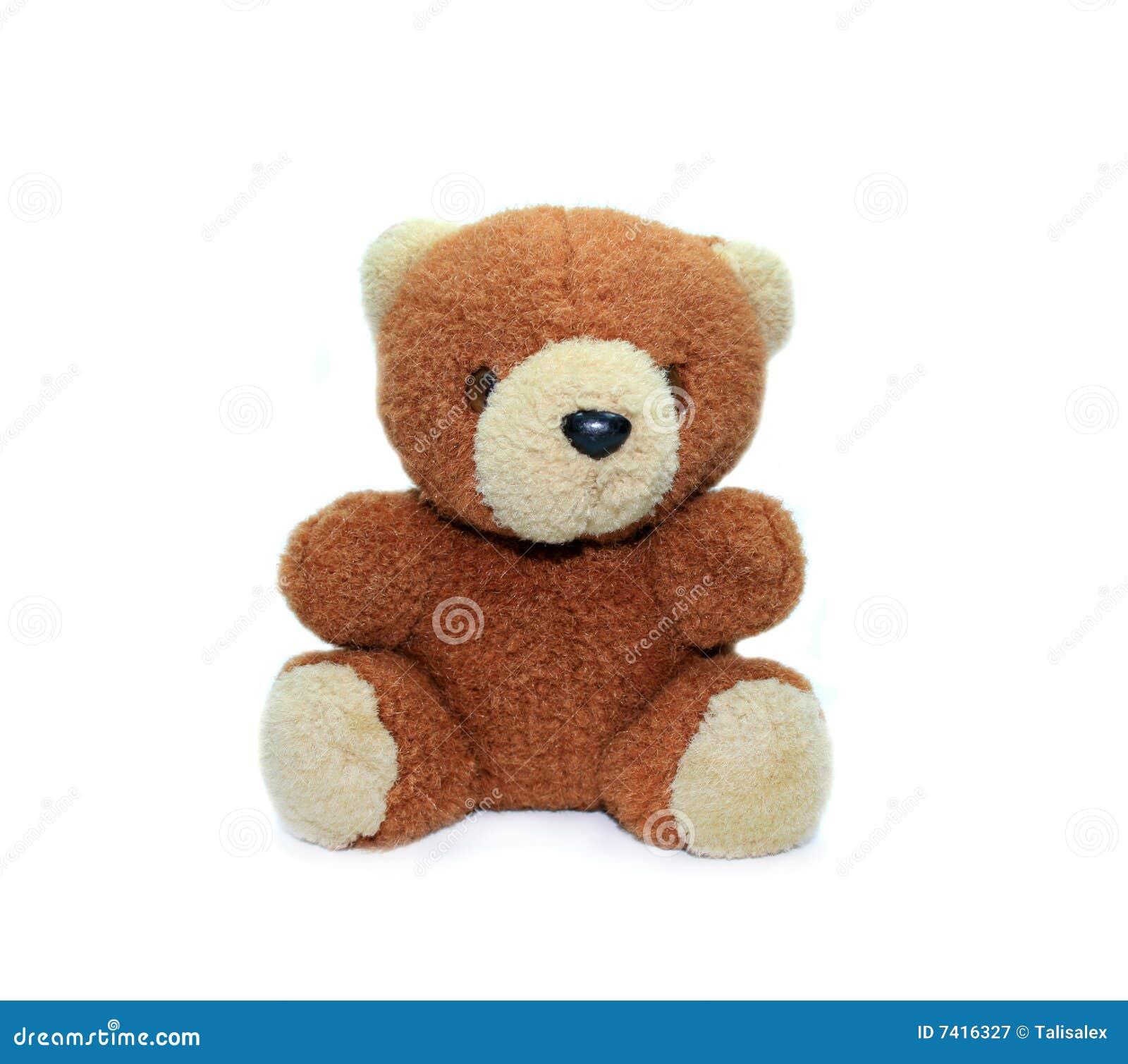 petit nounours d ours