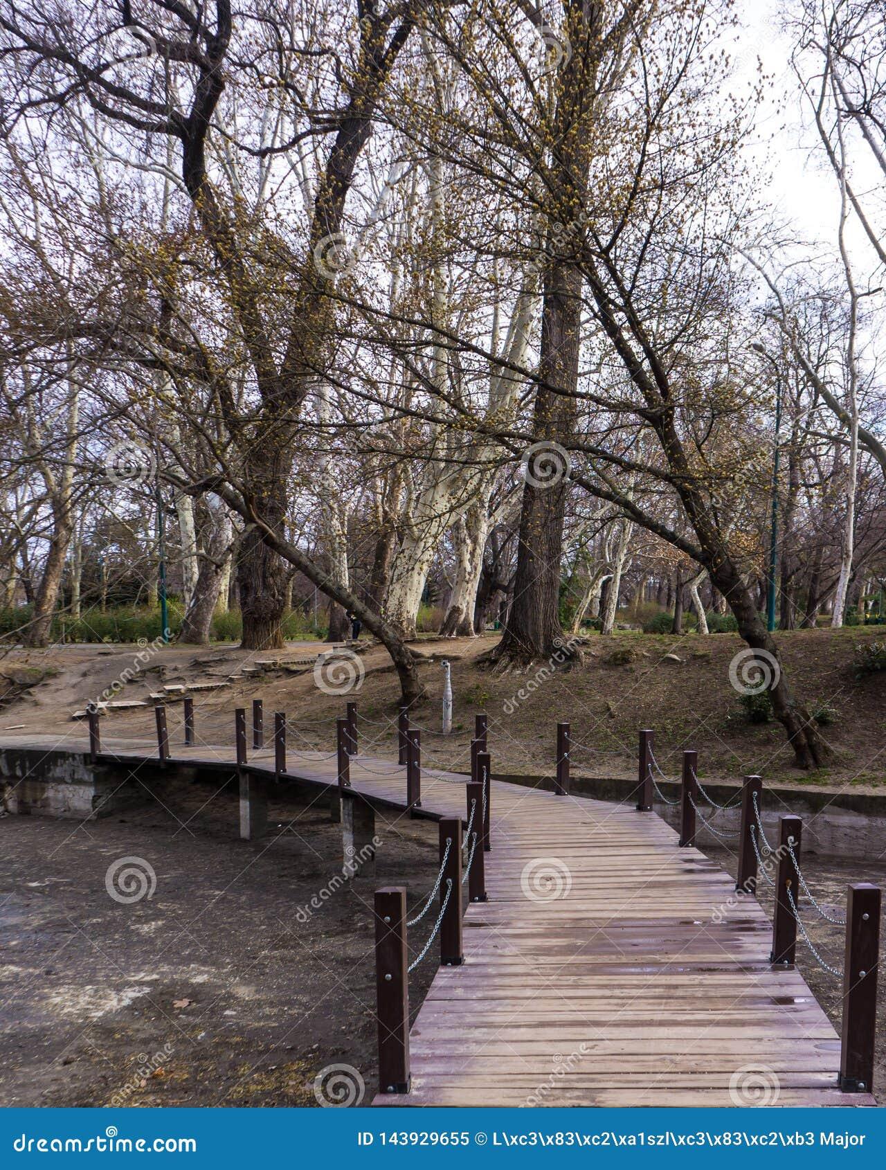 Petit pont au-dessus de rivière dans la forêt dans le vajdahunyad Budapest