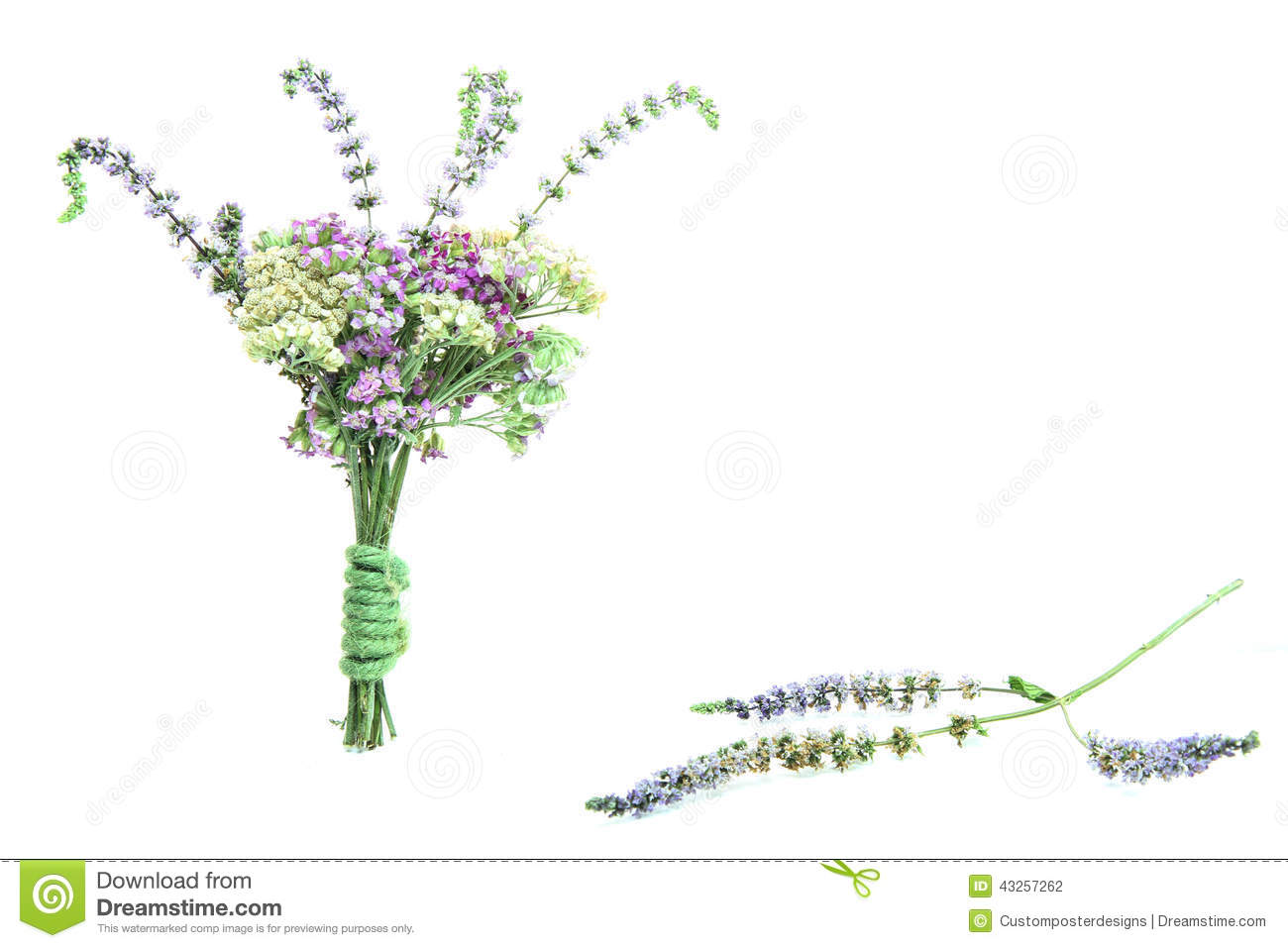 Download A Petite Bouquet Of Flowers With A Purple Flower F Stock Photo - Image of format, little: 43257262