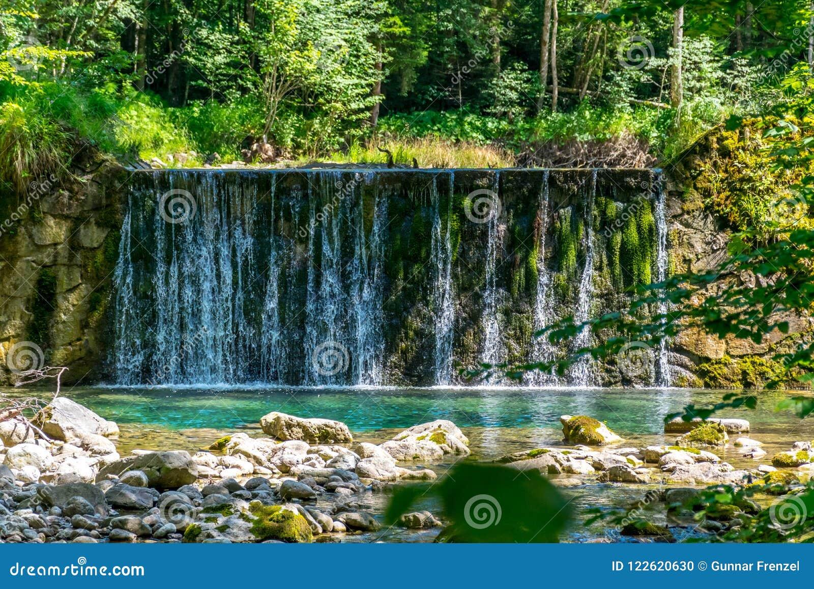 Petite cascade verticale dans la forêt pendant le soleil