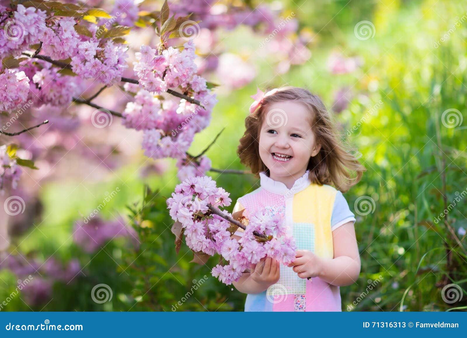 5bf9064a53121 Petite fille heureuse jouant sous le cerisier de floraison avec les fleurs roses  Enfant tenant la fleur de Sakura Amusement d été pour la famille avec des  ...