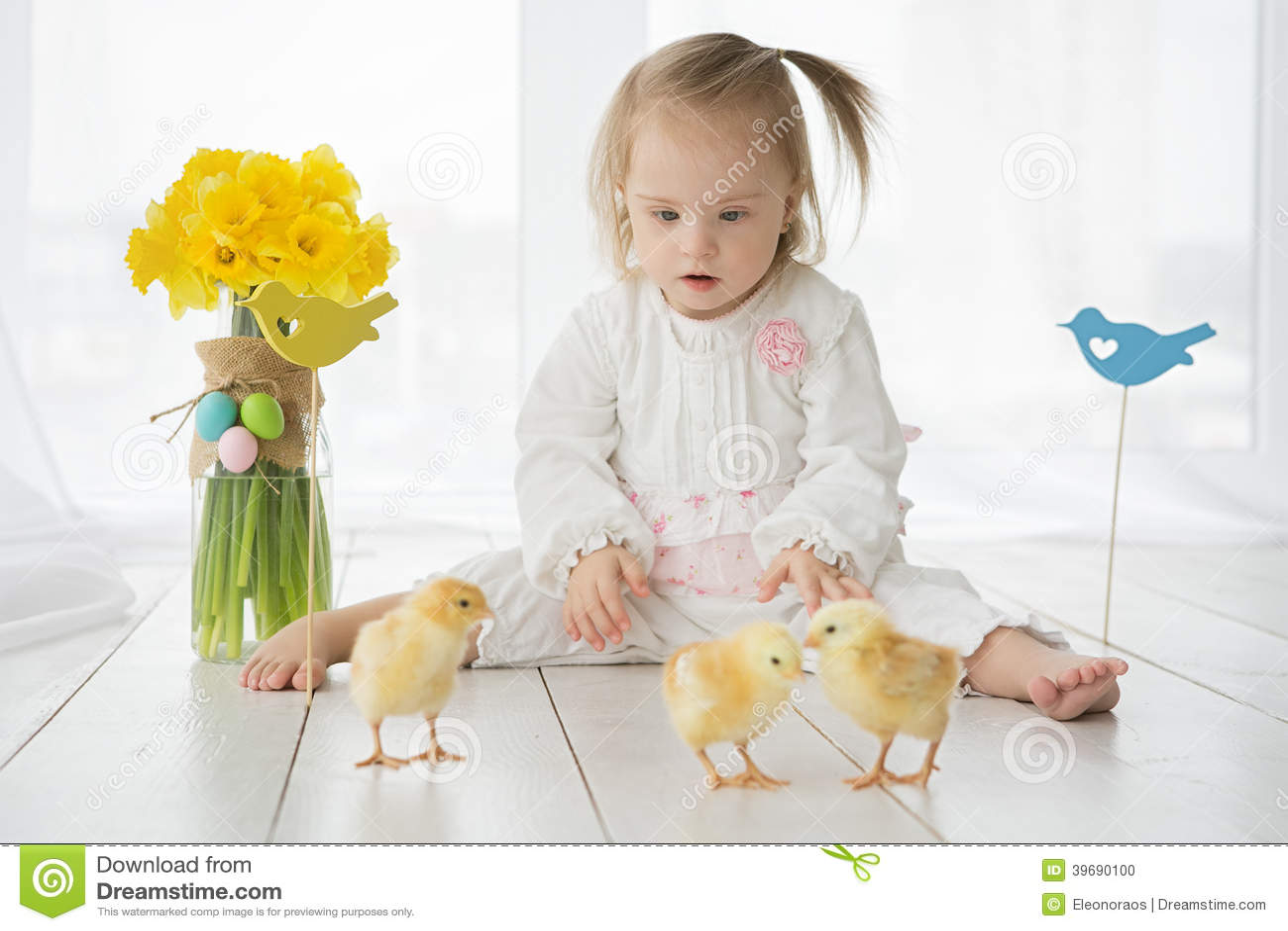 Petite fille avec la trisomie 21 jouant avec les poulets jaunes
