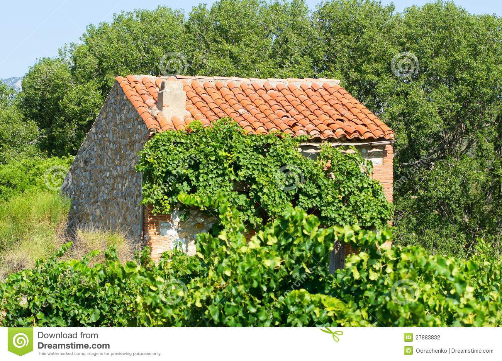 Petite maison une vigne au sud de la france photo stock for Acheter une maison sud de la france