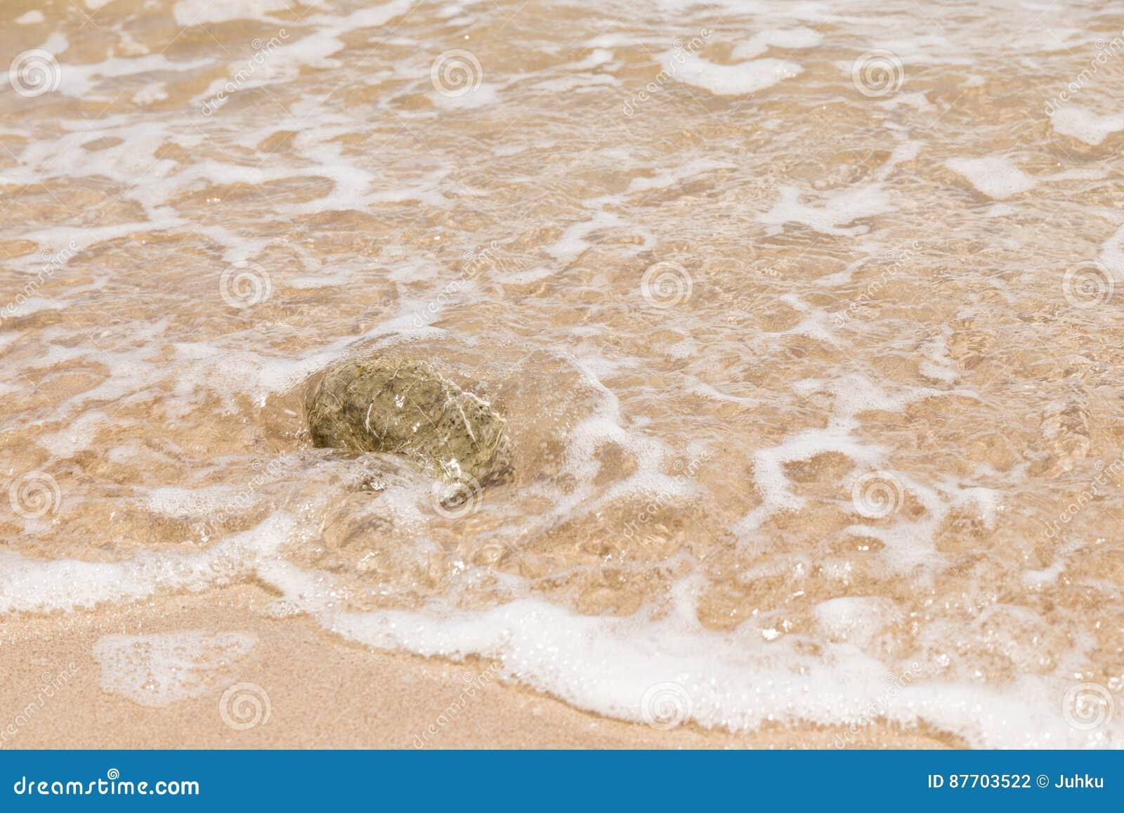 Petite pierre sur la plage de sable