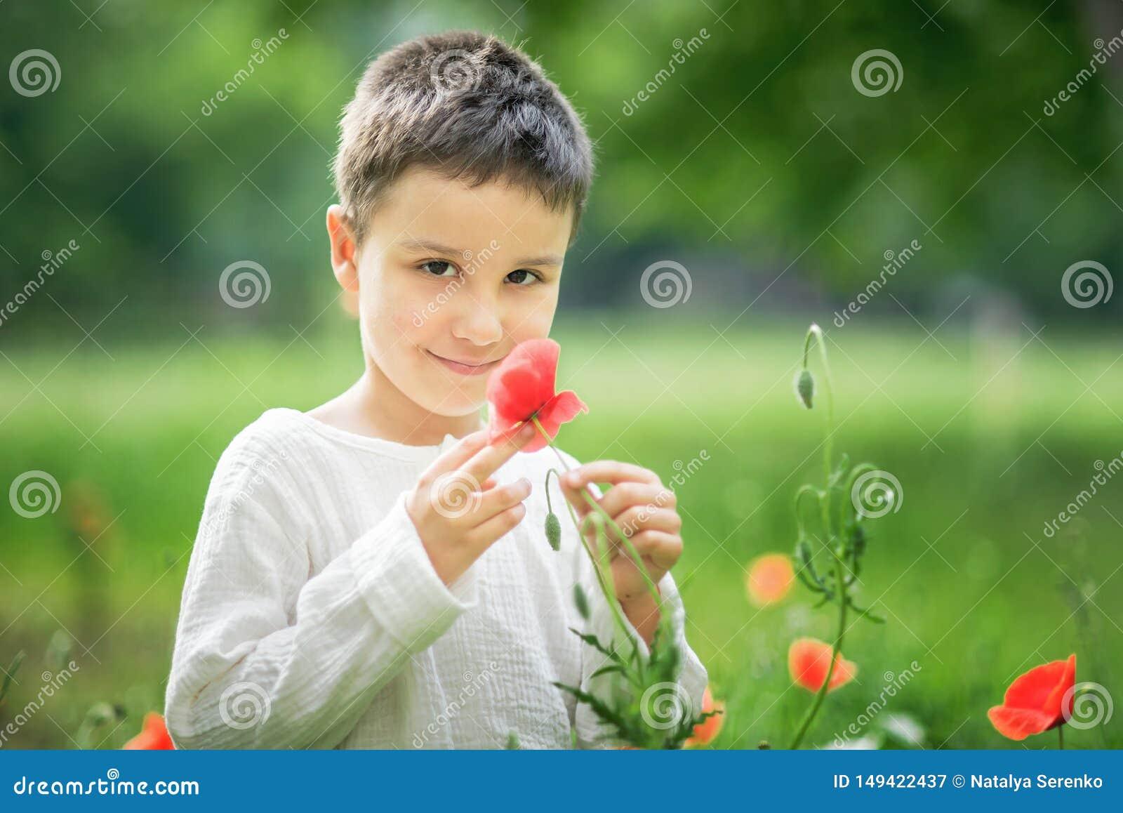 Petite position de sourire heureuse de garçon et sourire dans le domaine de pavot