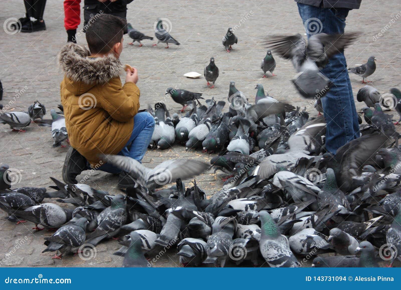 Petits enfants un jour d hiver jouant dans une place dans une ville européenne Ils ont plaisir à chasser des pigeons et à les ali
