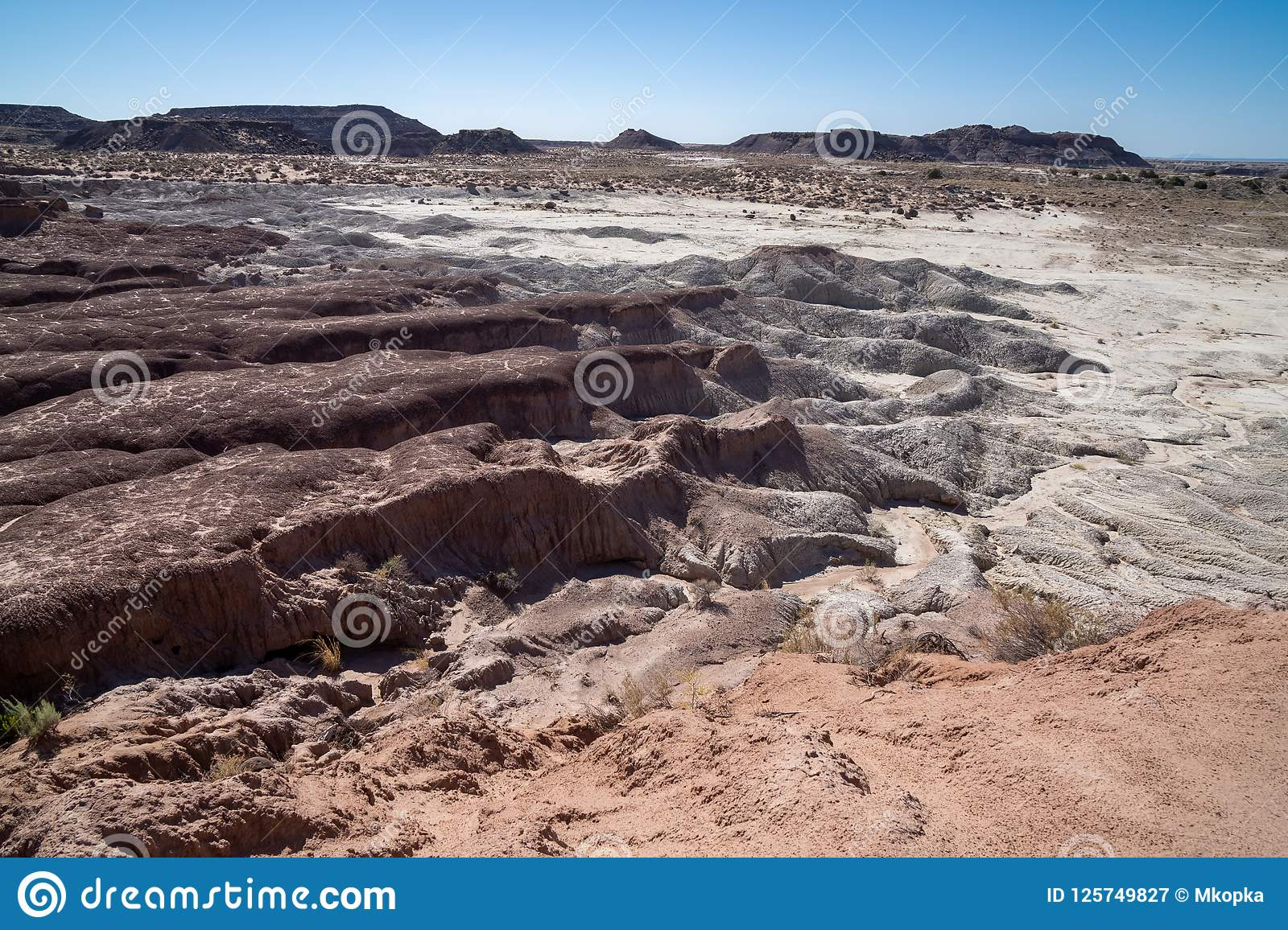 Petrified Forest National Park in the Four Corners area of Arizona