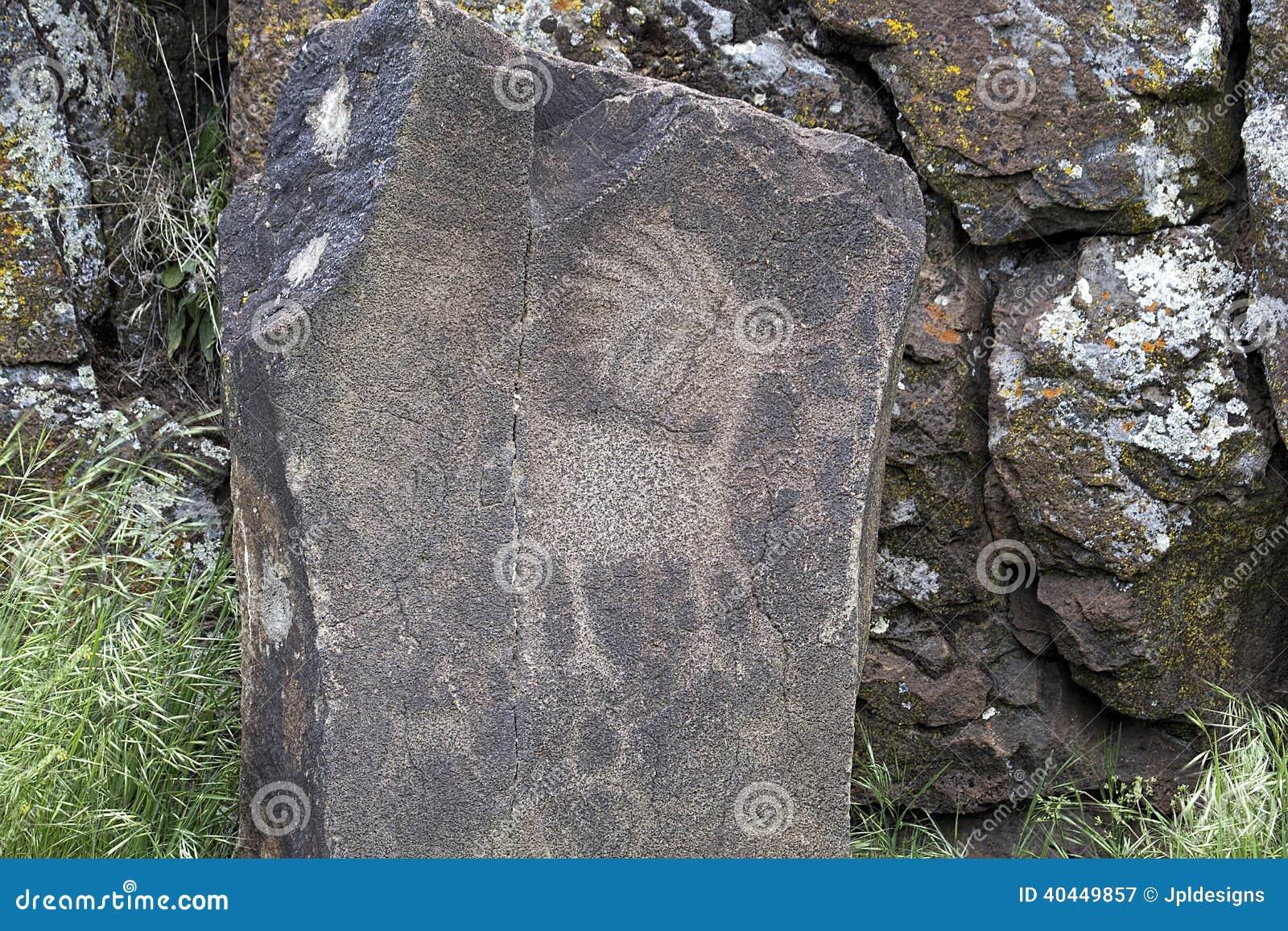 Petroglyph indiano nativo do animal do antílope