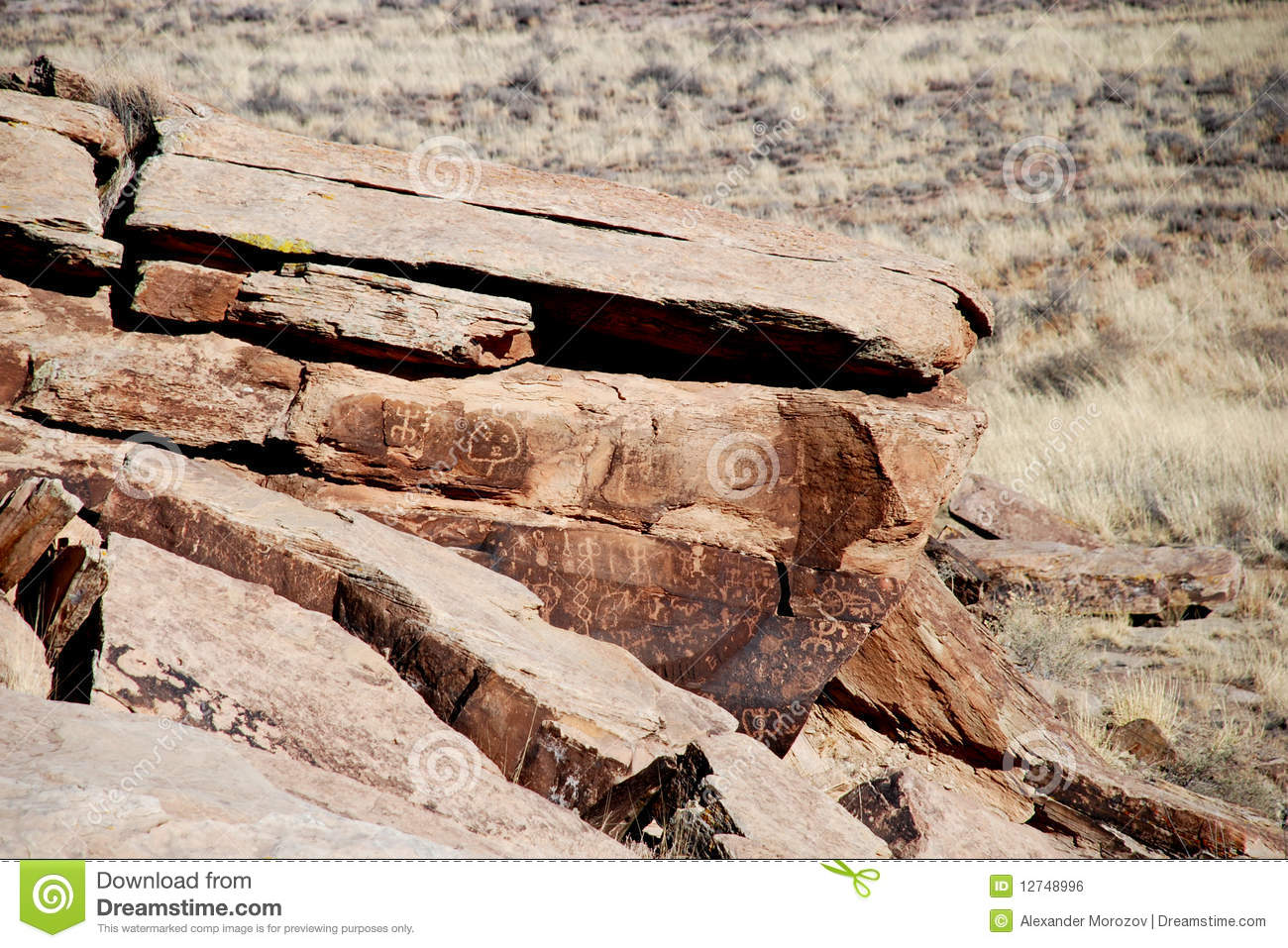 buddhist single women in petrified forest natl pk One of the largest concentrations of petrified wood in the world is found at  petrified forest national park in eastern arizona, about 110 miles.