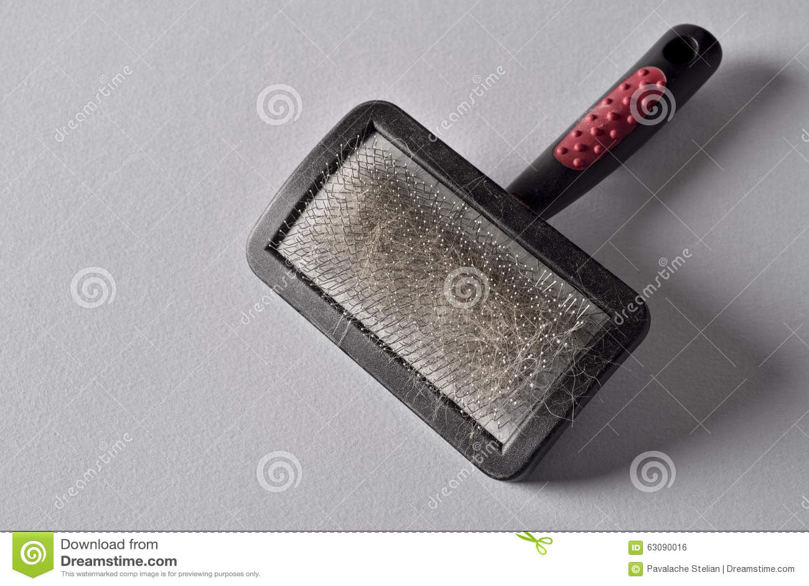 Pets brush