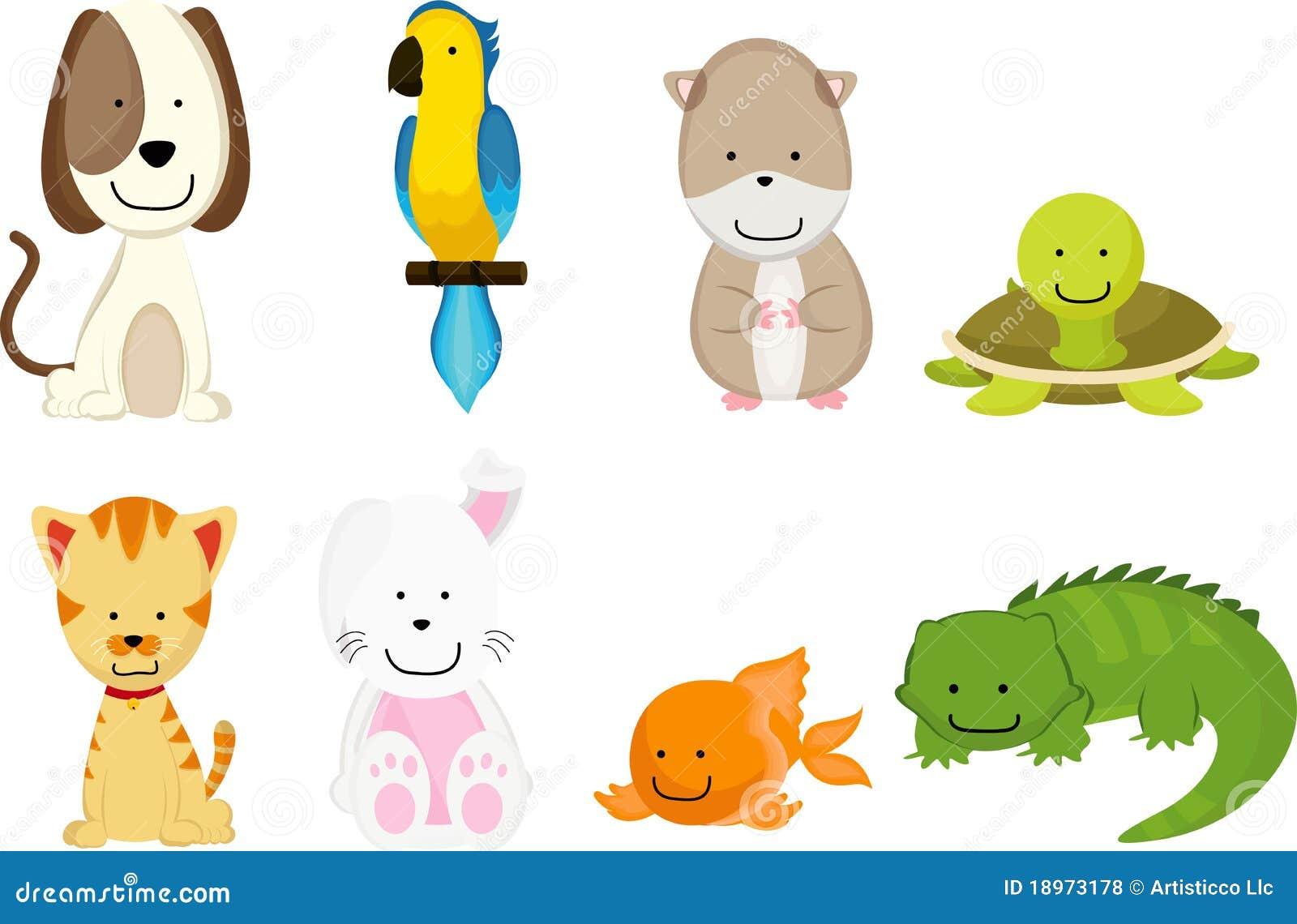 Pets cartoon