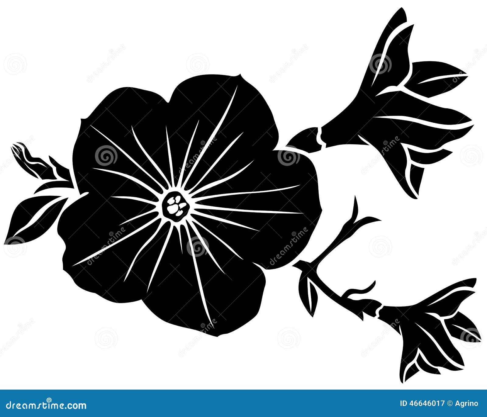 Petunia Flower Silhouette Stock Vector Image