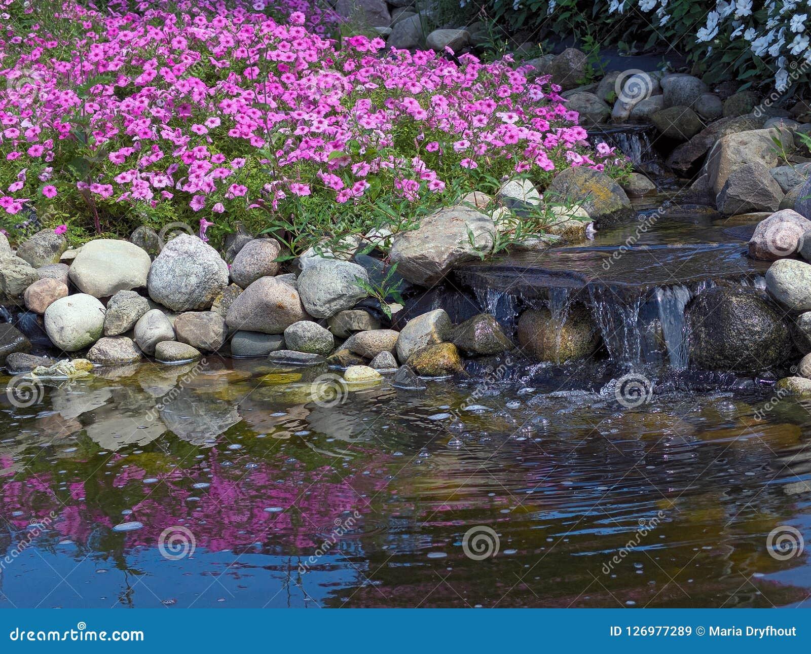 Petunias And Waterfalls In Rock Garden