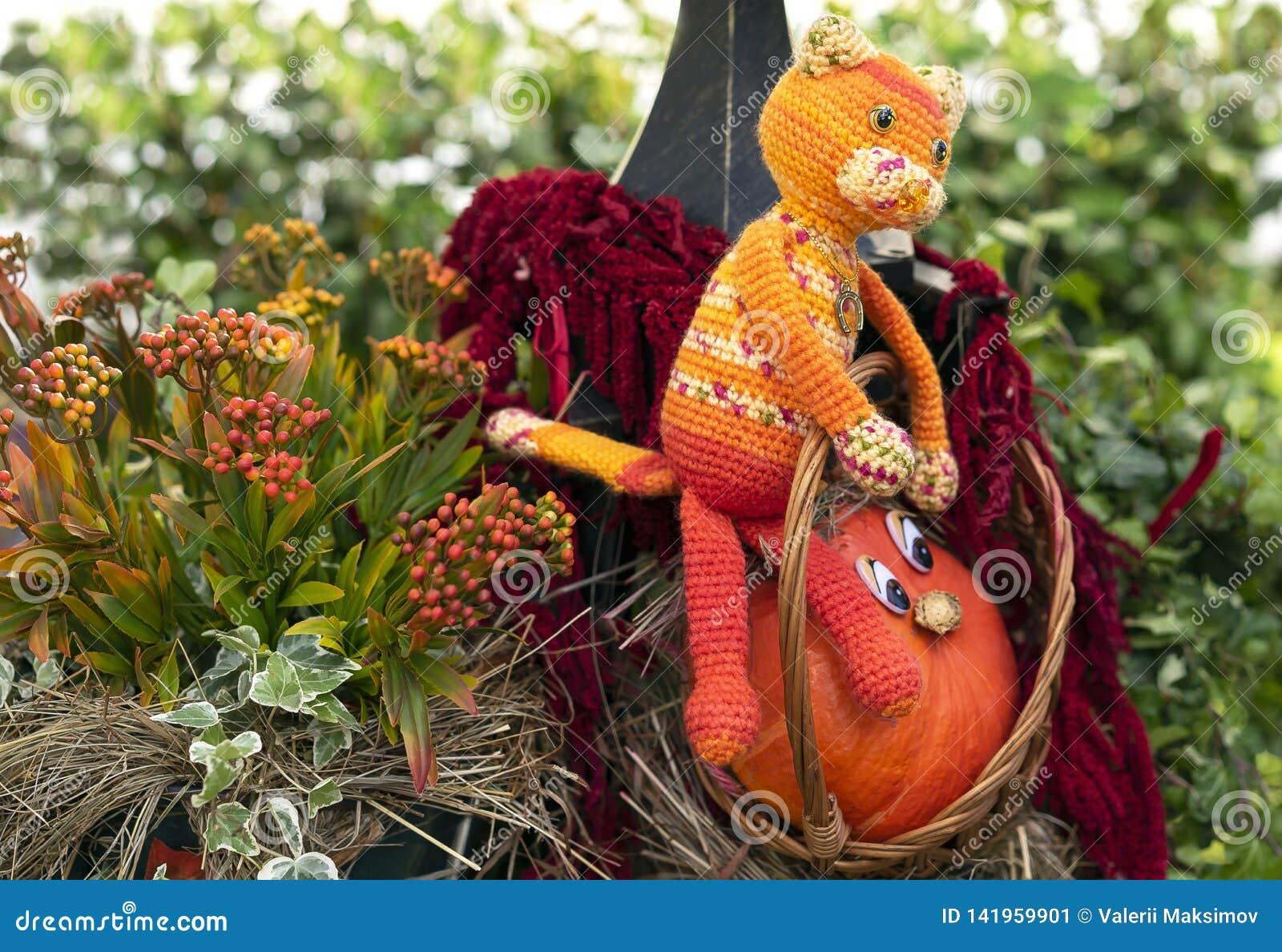 Peu chat orange de potiron et de jouet dans un panier de rotin