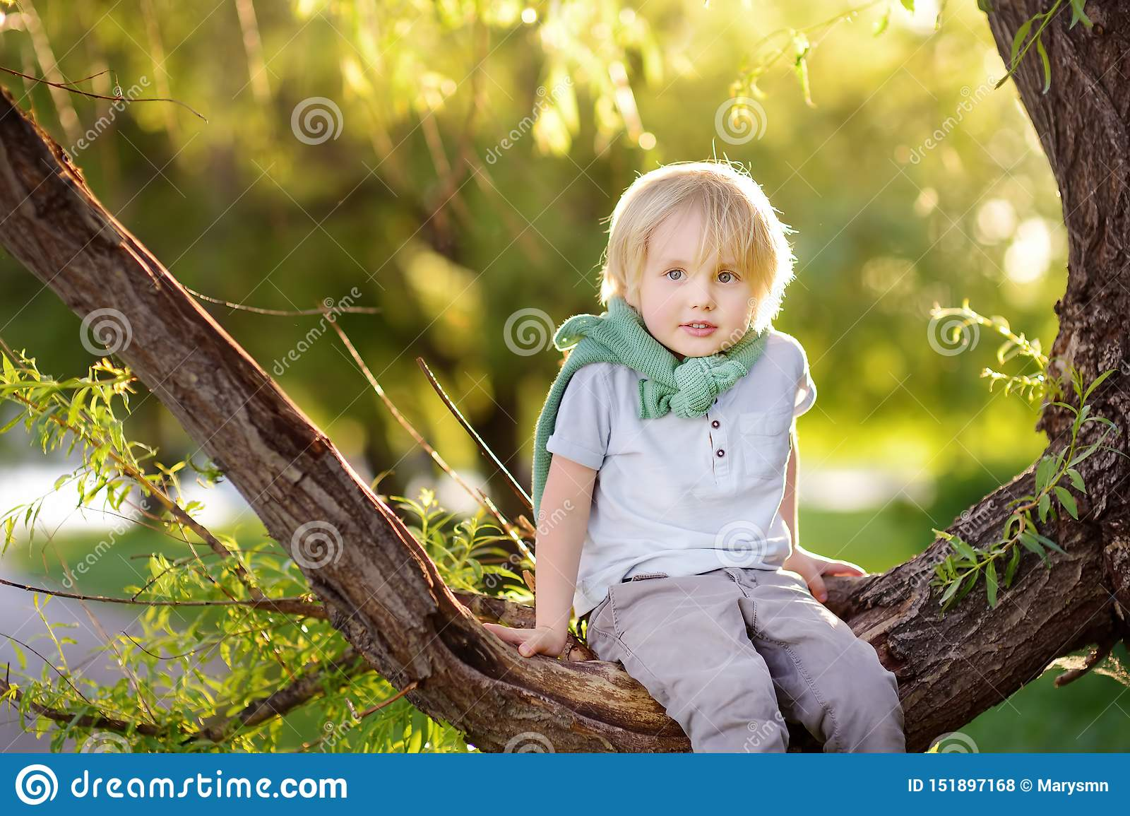 Peu de gar?on s assied sur une branche de grand arbre et r?ve Les jeux de l enfant Temps actif de famille sur la nature Hausse av