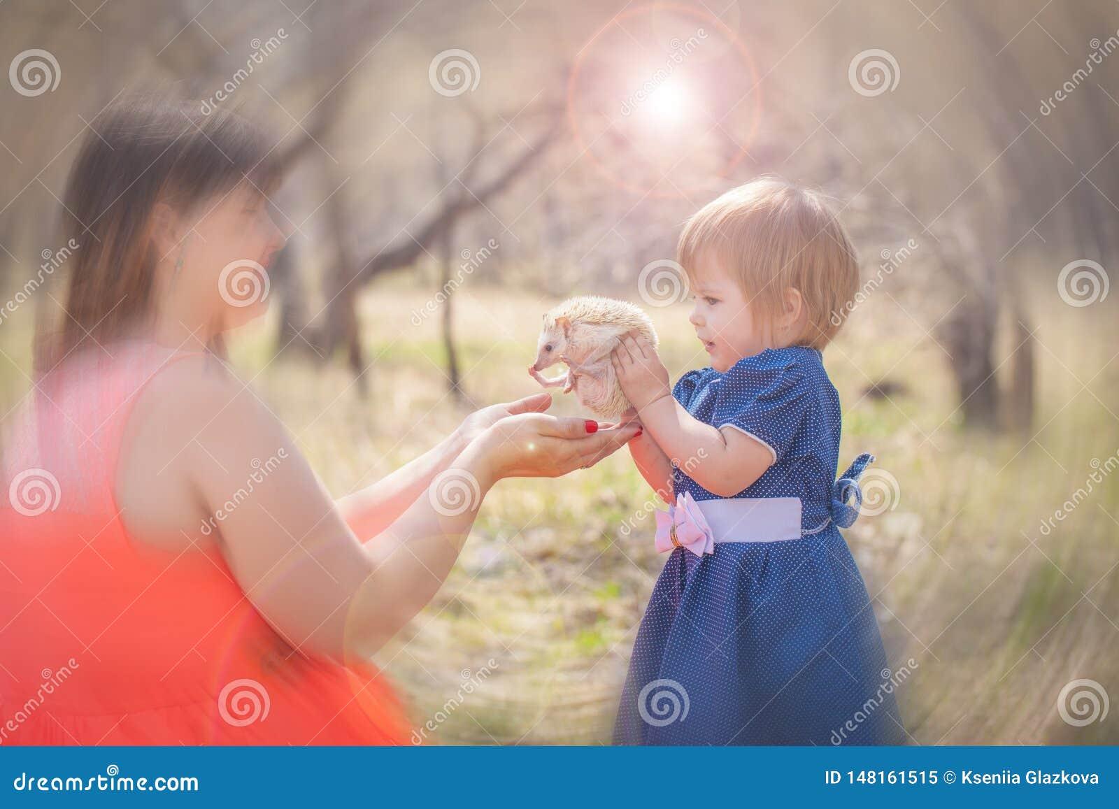 Peu fille tenant un h?risson Les jeux d enfant avec l animal