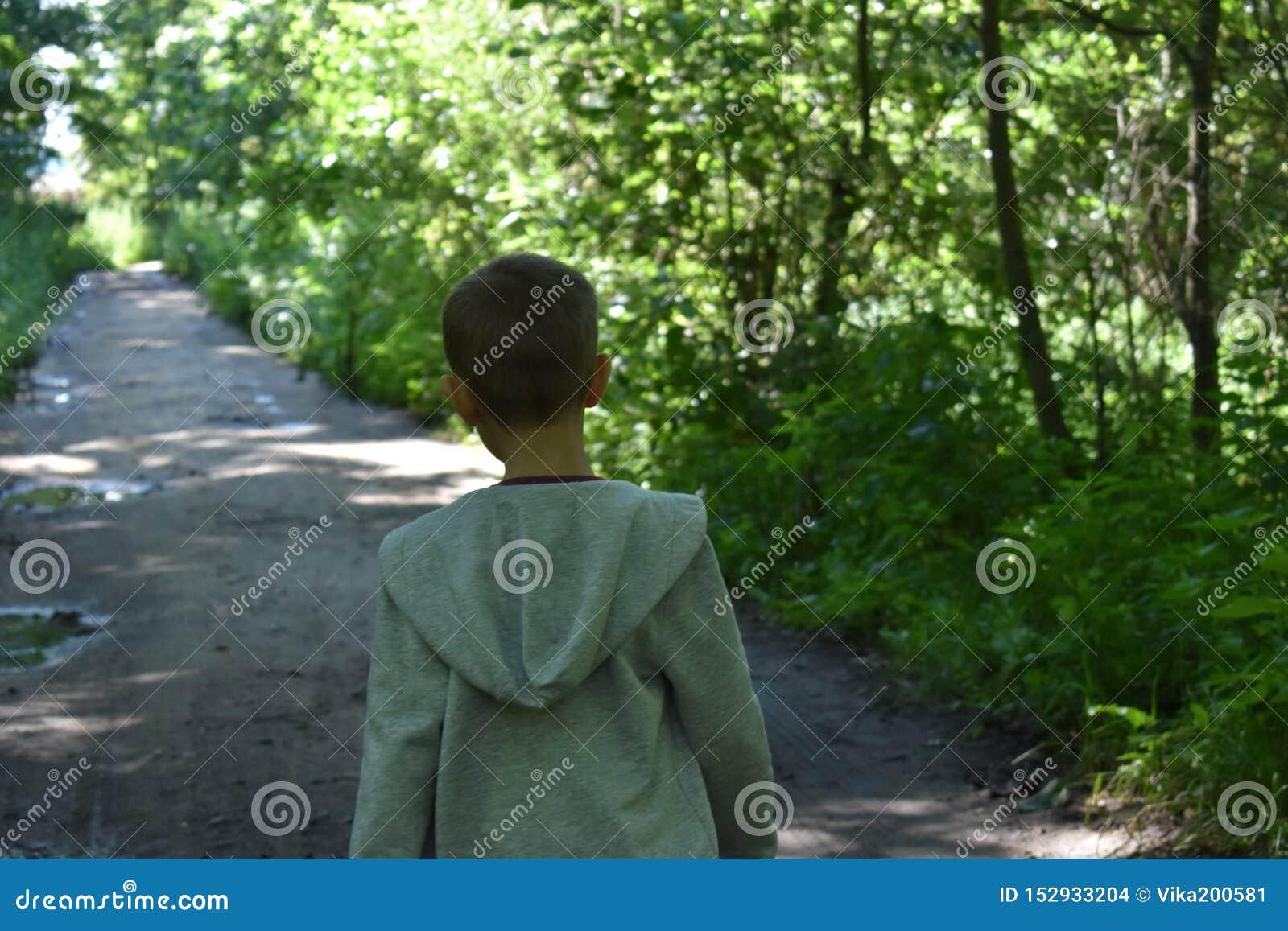 Peu garçon dans la forêt l été