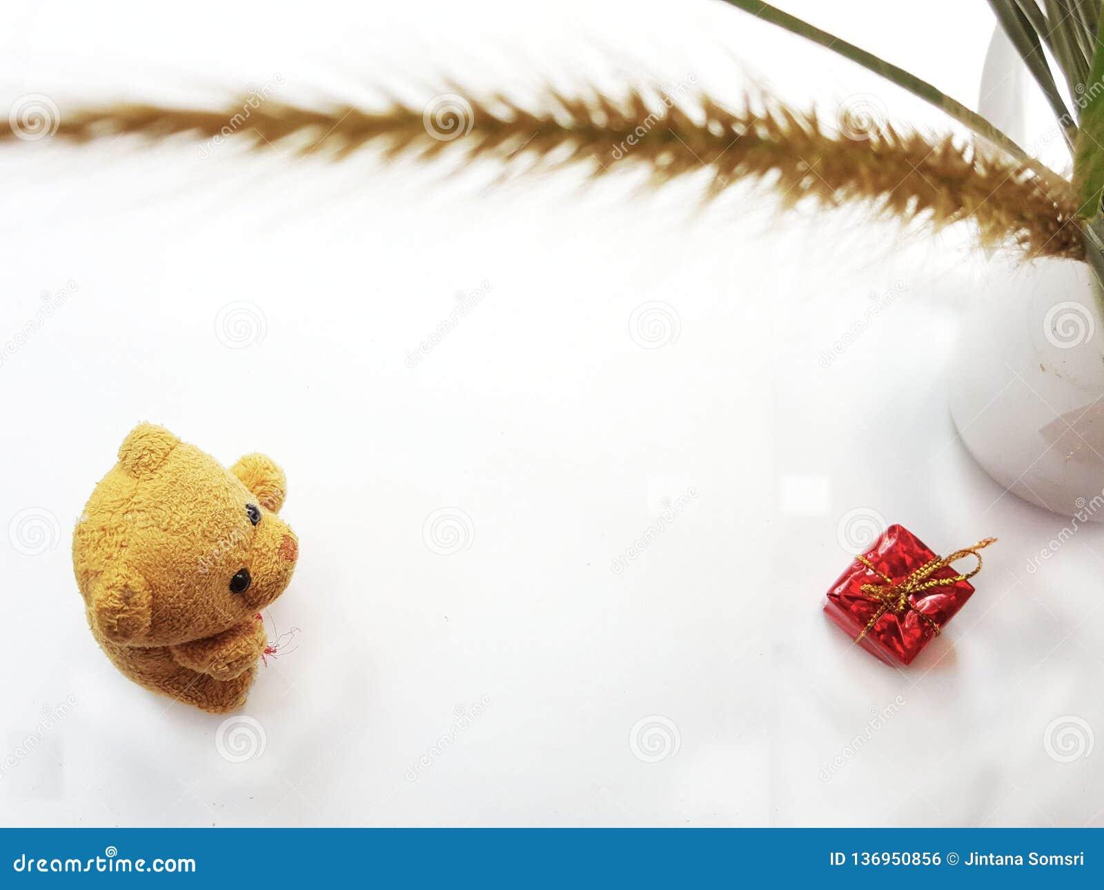 Peu ours avec le gife Jour heureux d amants Concept de jour du ` s de Valentine
