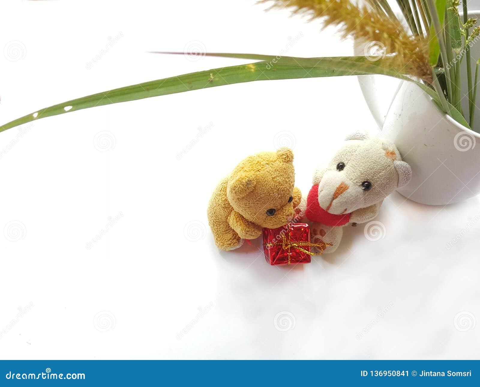Peu ours avec le jour heureux d amants Concept de jour du ` s de Valentine