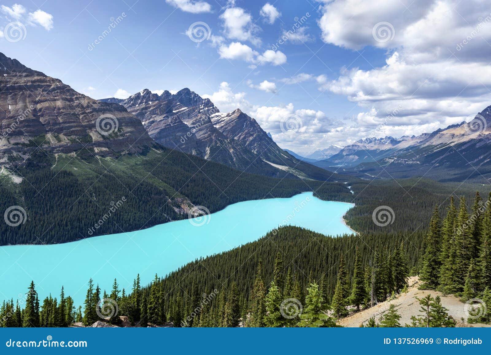 Peyto湖在班夫国家公园,亚伯大,加拿大