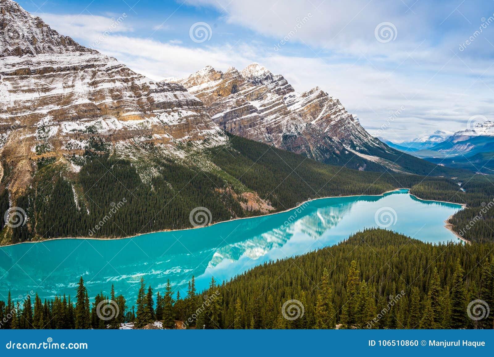 Peyto sjö i den Banff nationalparken Alberta Canada