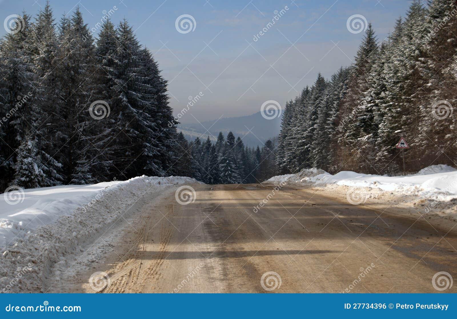 Pfad im Winterwald