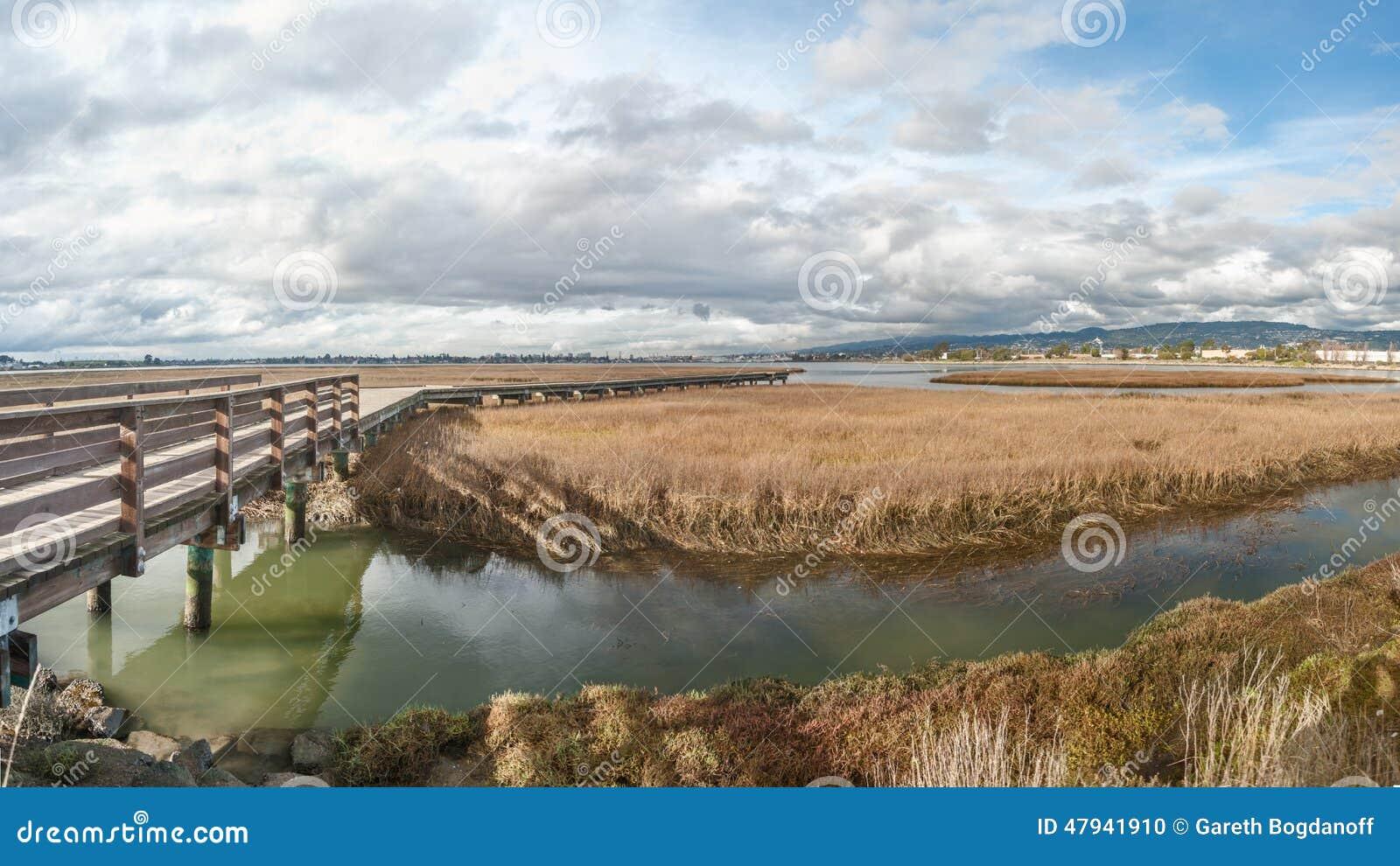 Pfeilspitzen-Sumpf