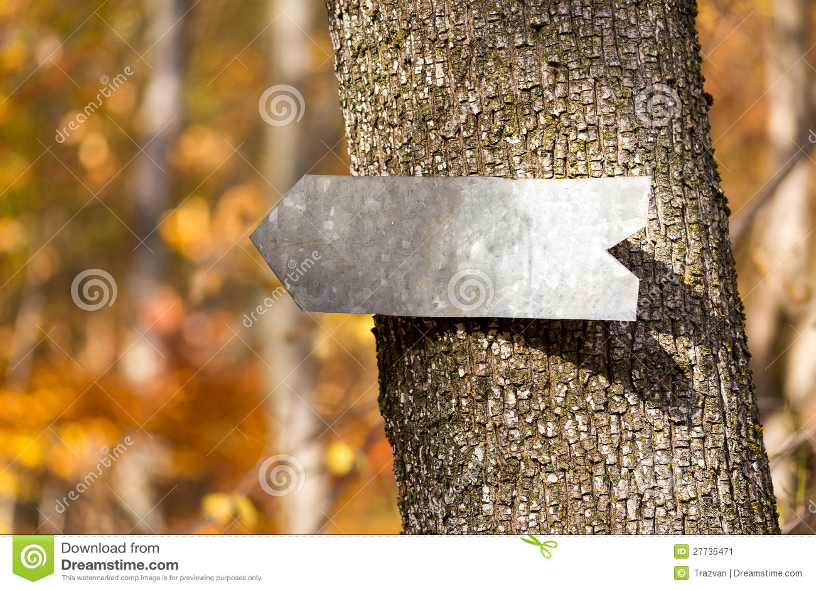 Pfeilzeichen auf einem Baum
